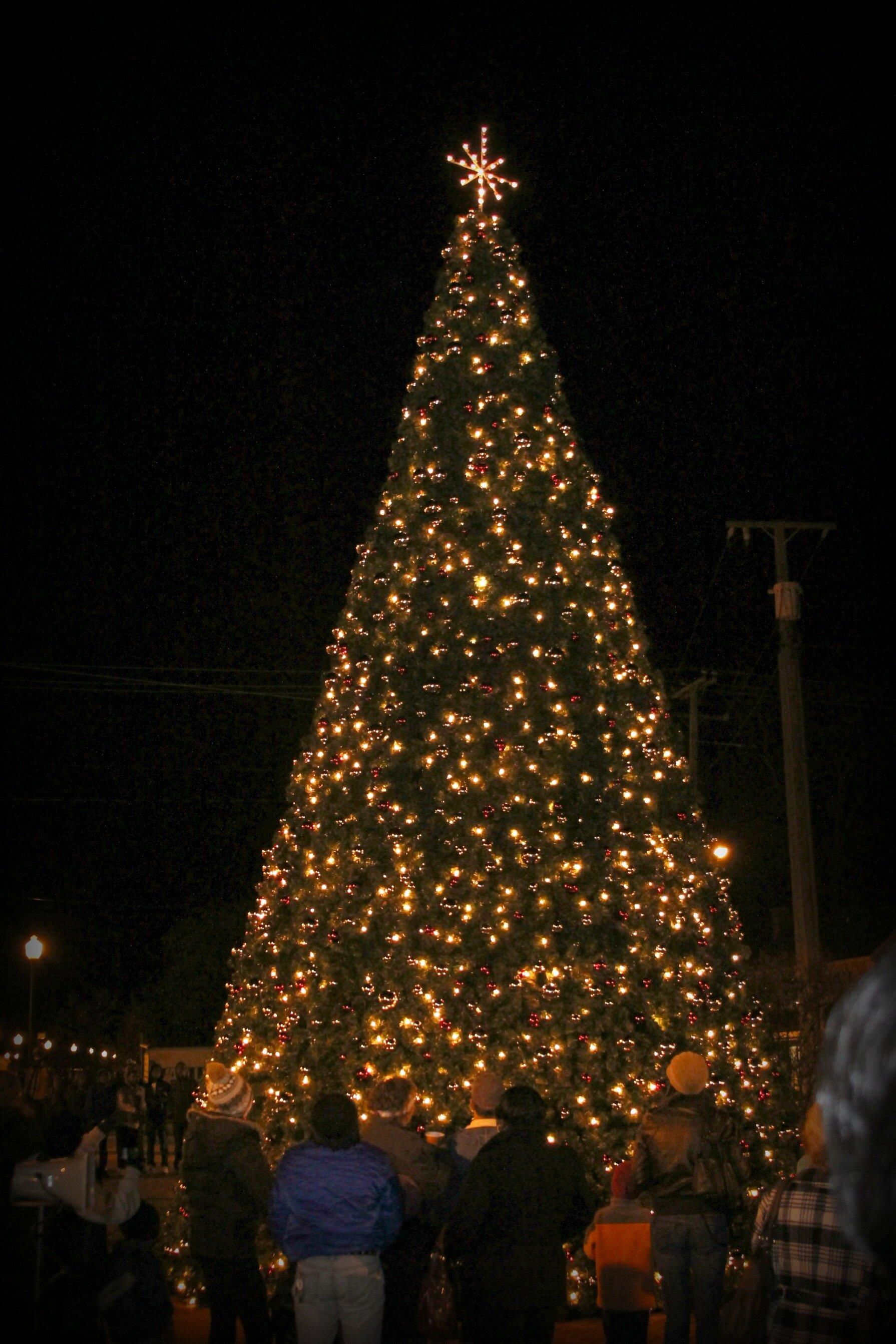 2011 Grand Illumination Edit 1.jpg