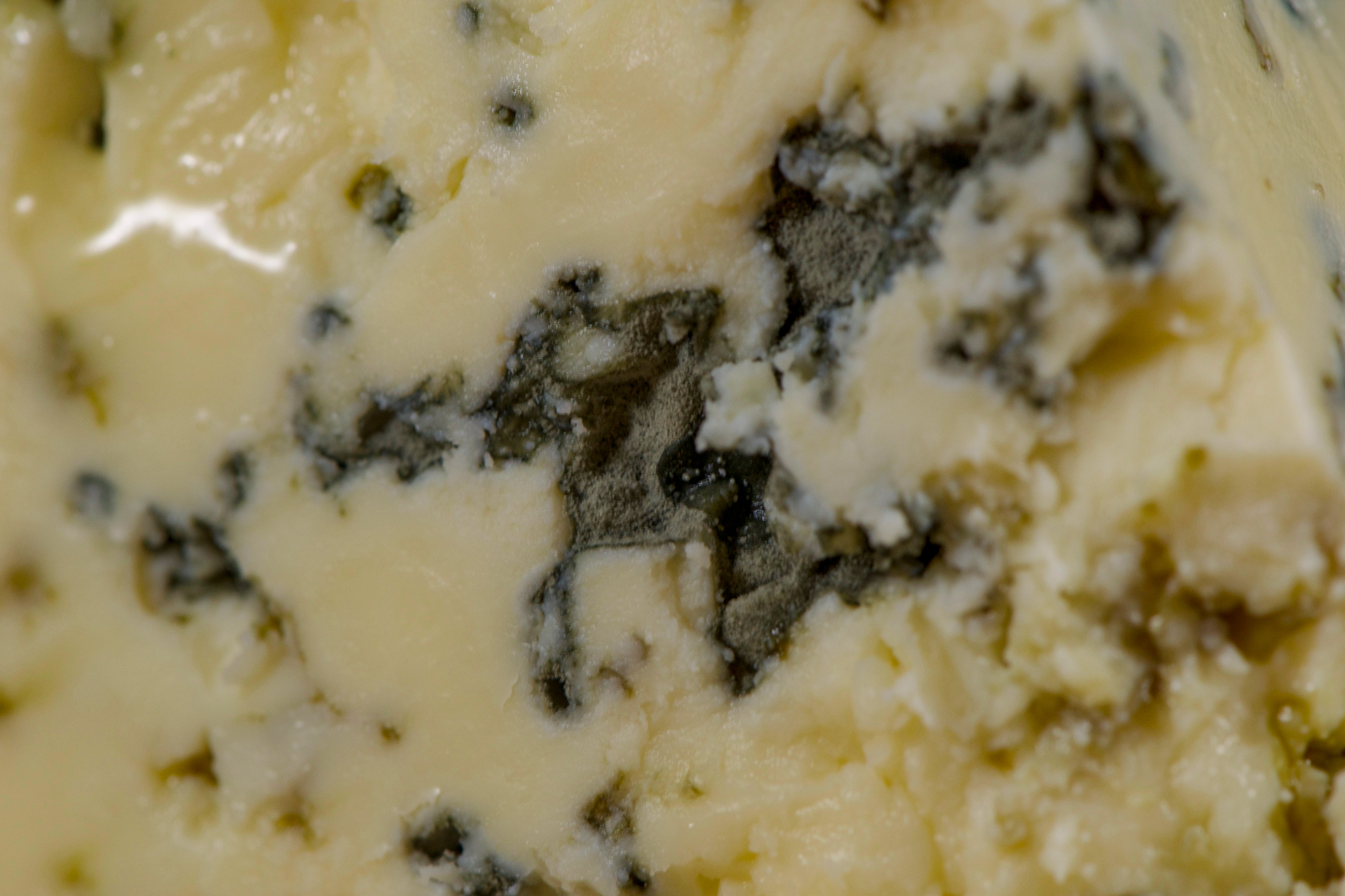 Bay Blue by Point Reyes Cheese