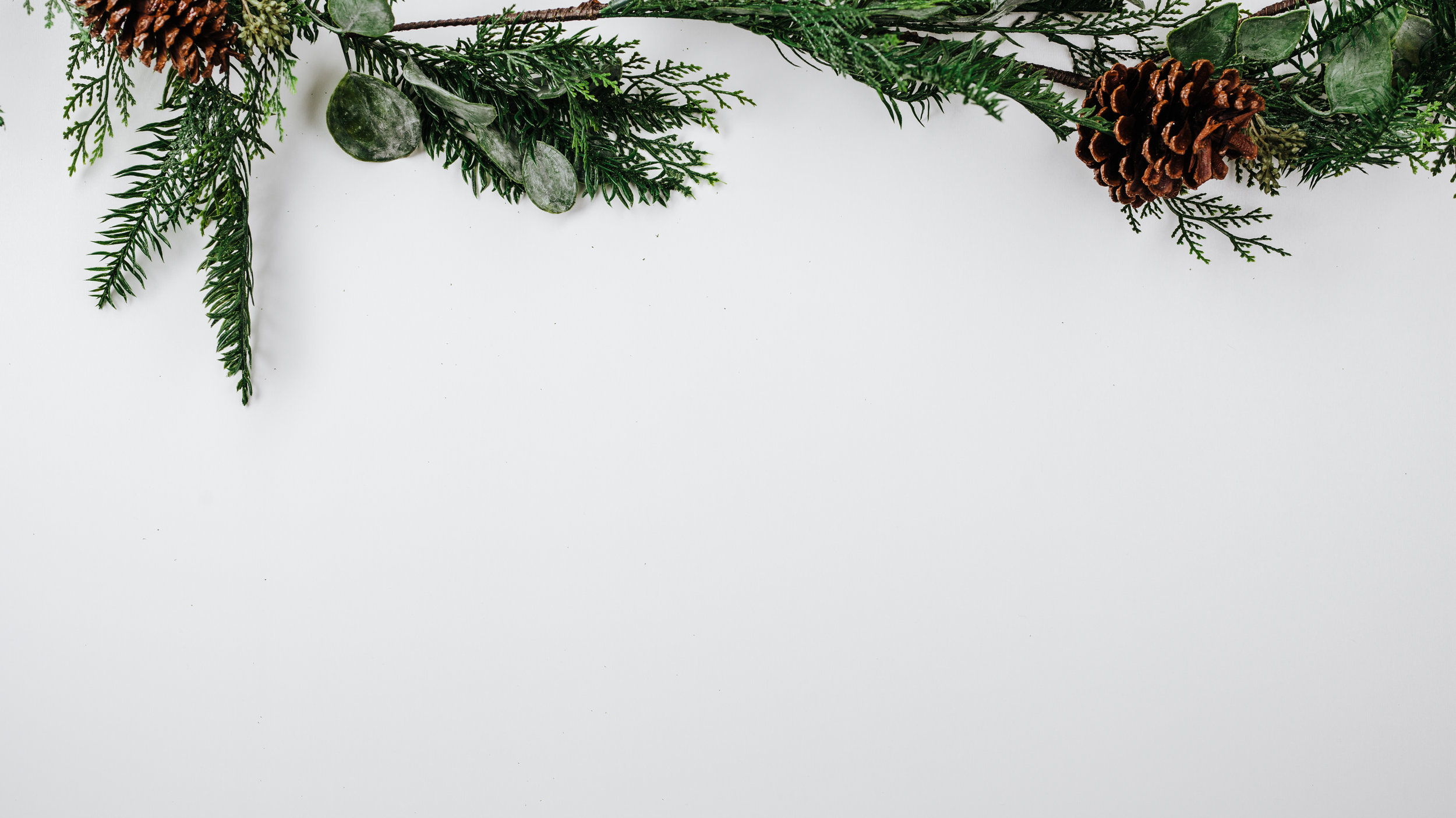 Modern Christmas-24.jpg