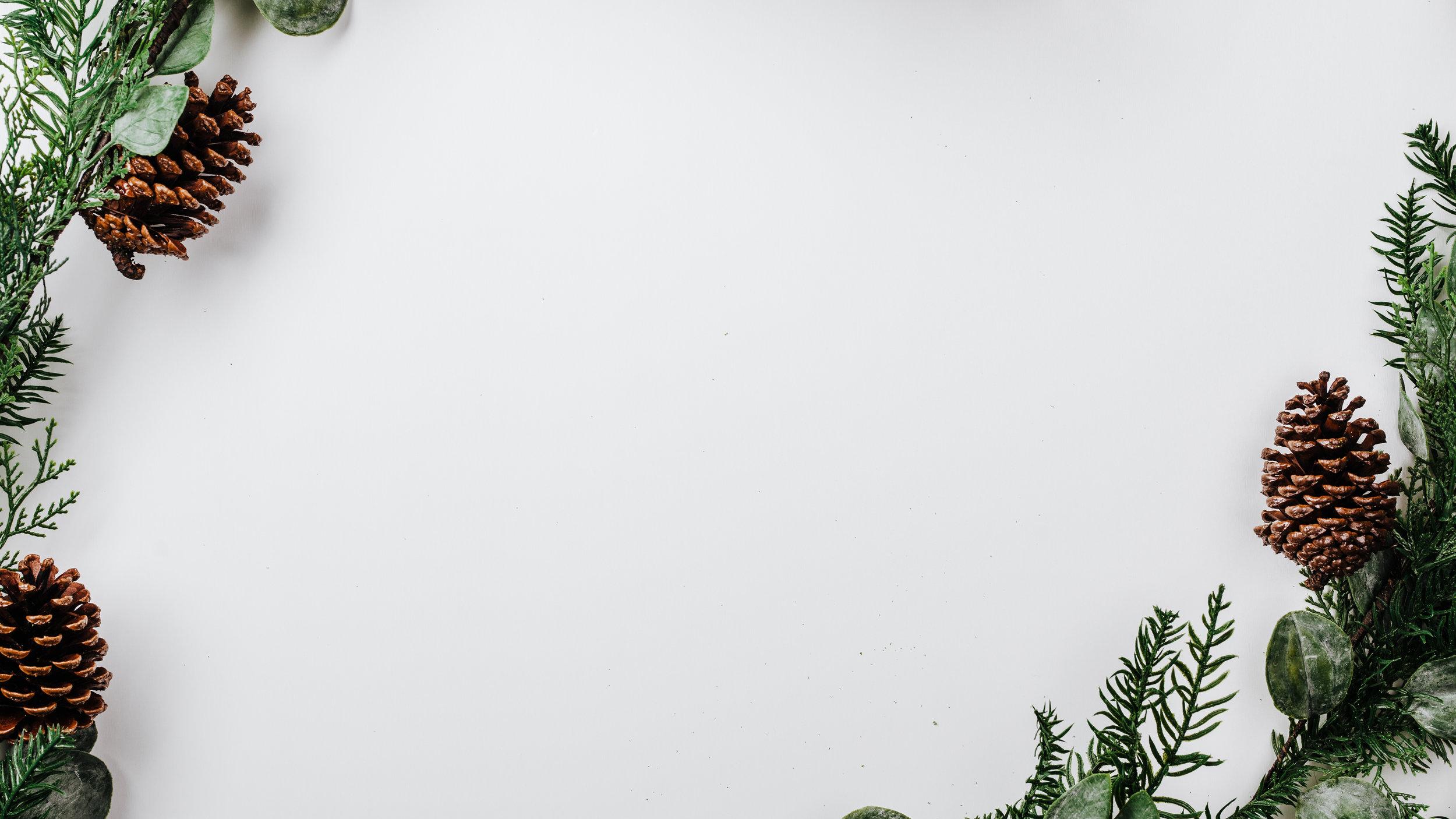 Modern Christmas-25.jpg