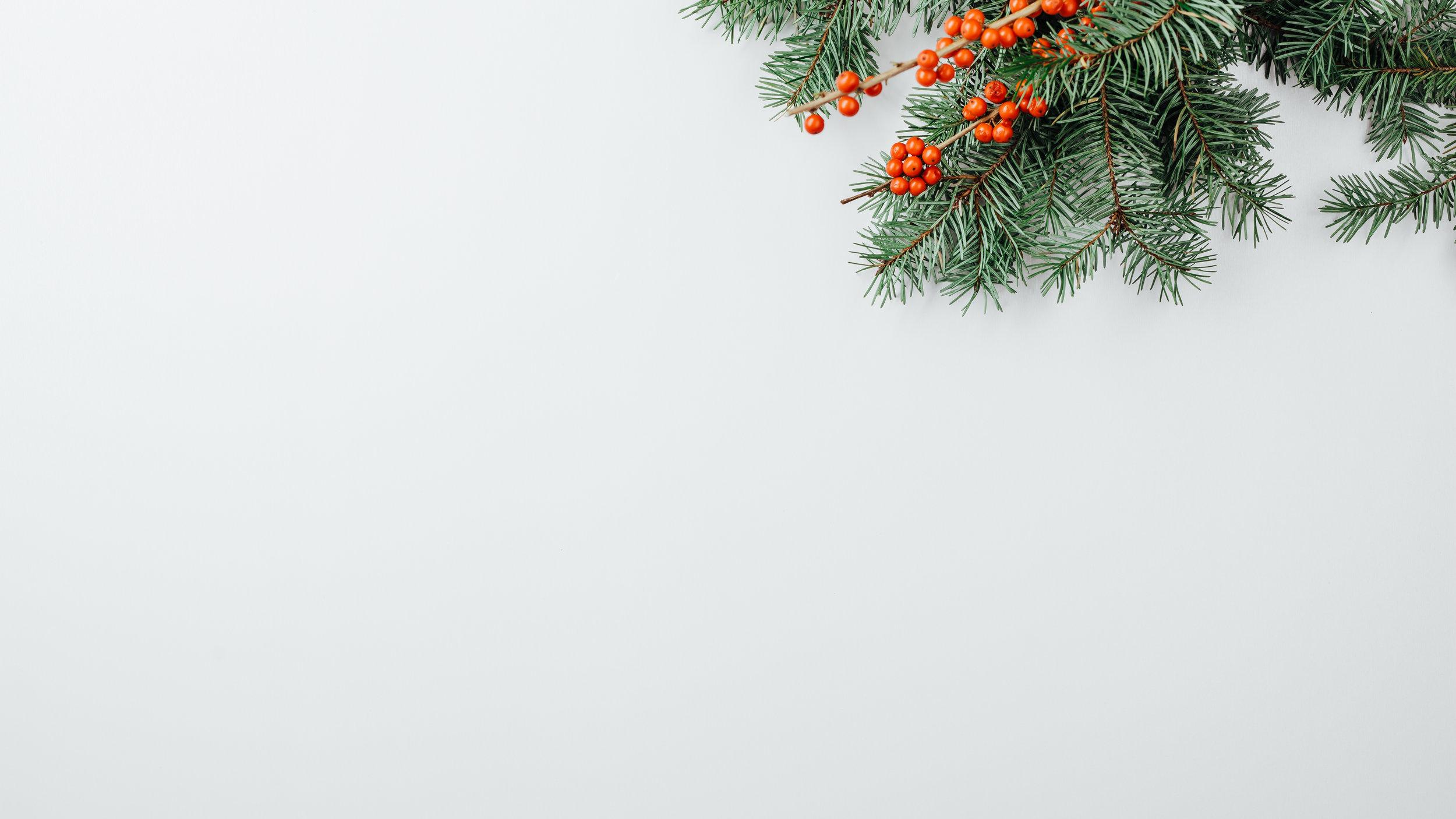 Modern Christmas-32.jpg