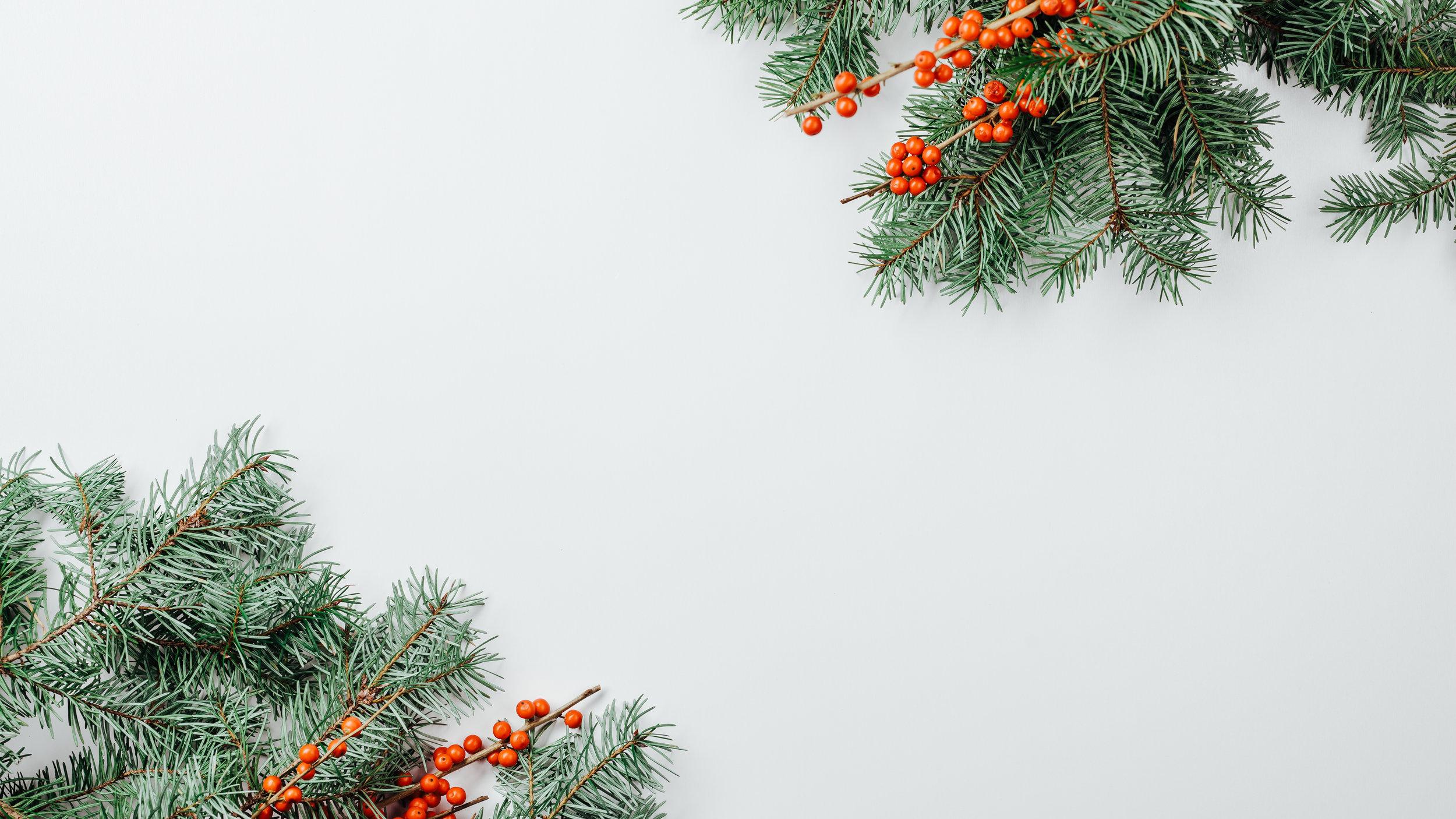 Modern Christmas-33.jpg