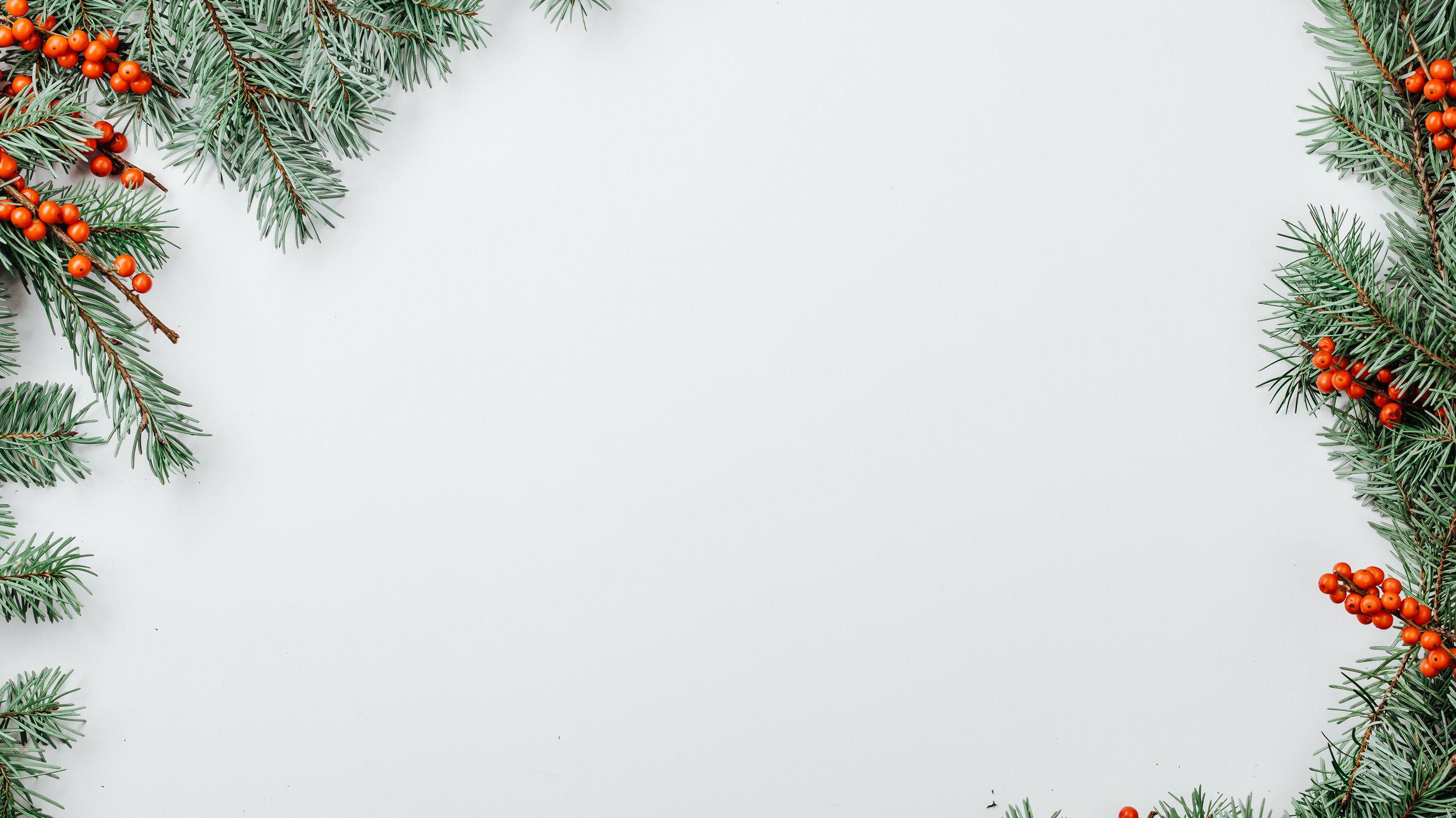 Modern Christmas-44.jpg