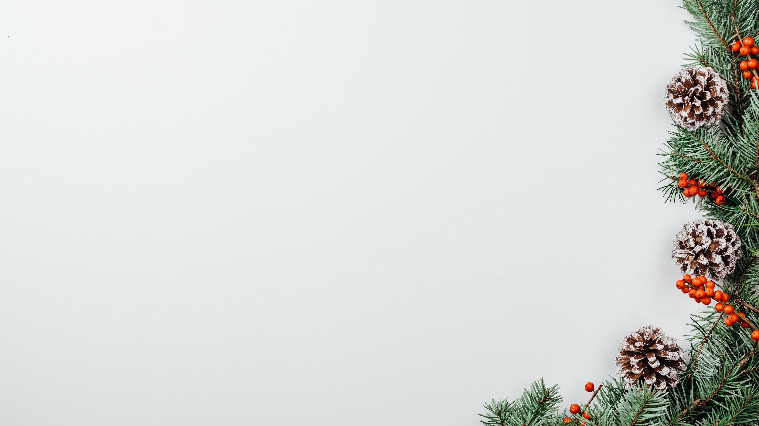 Modern Christmas-46.jpg
