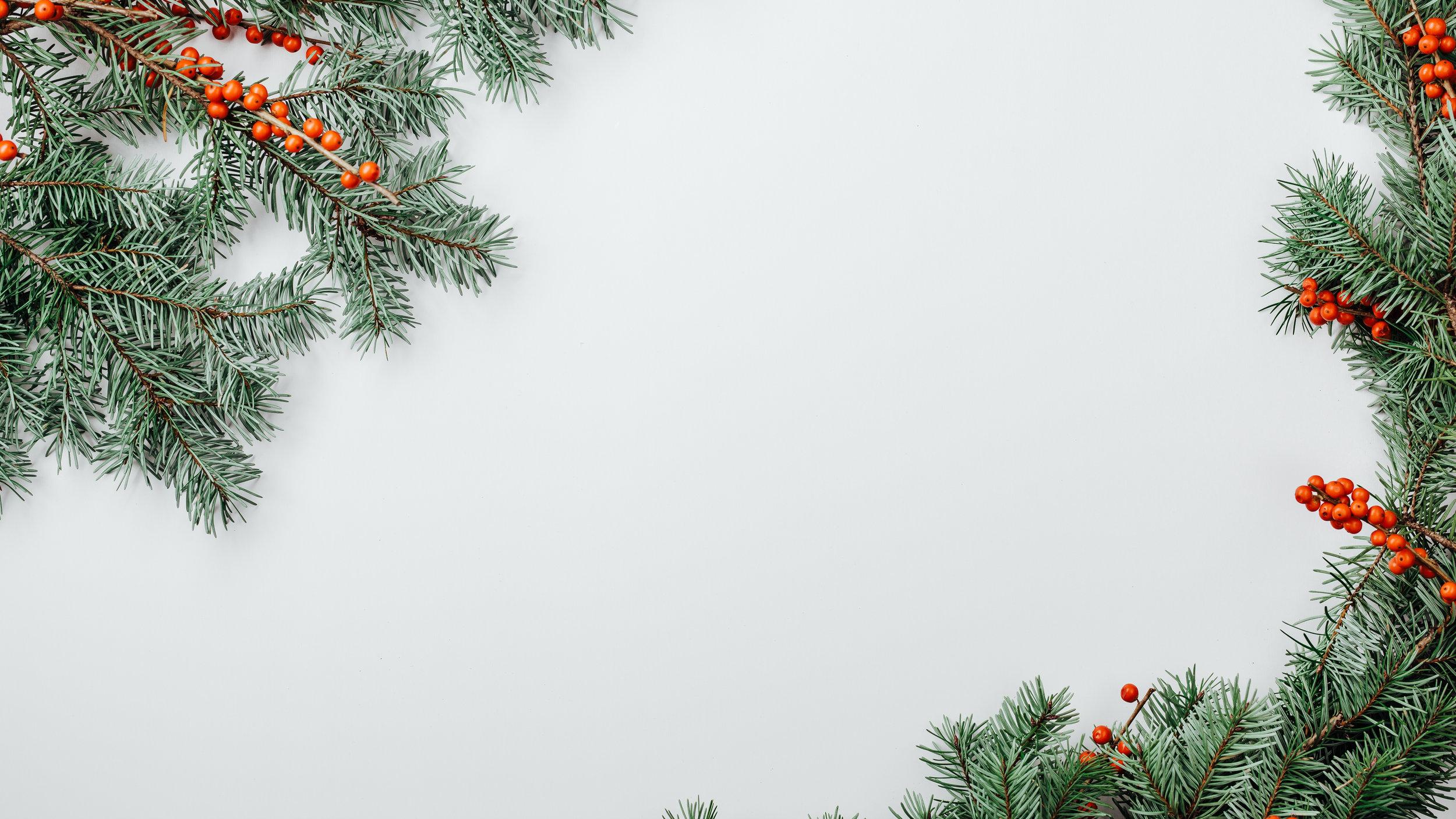 Modern Christmas-47.jpg
