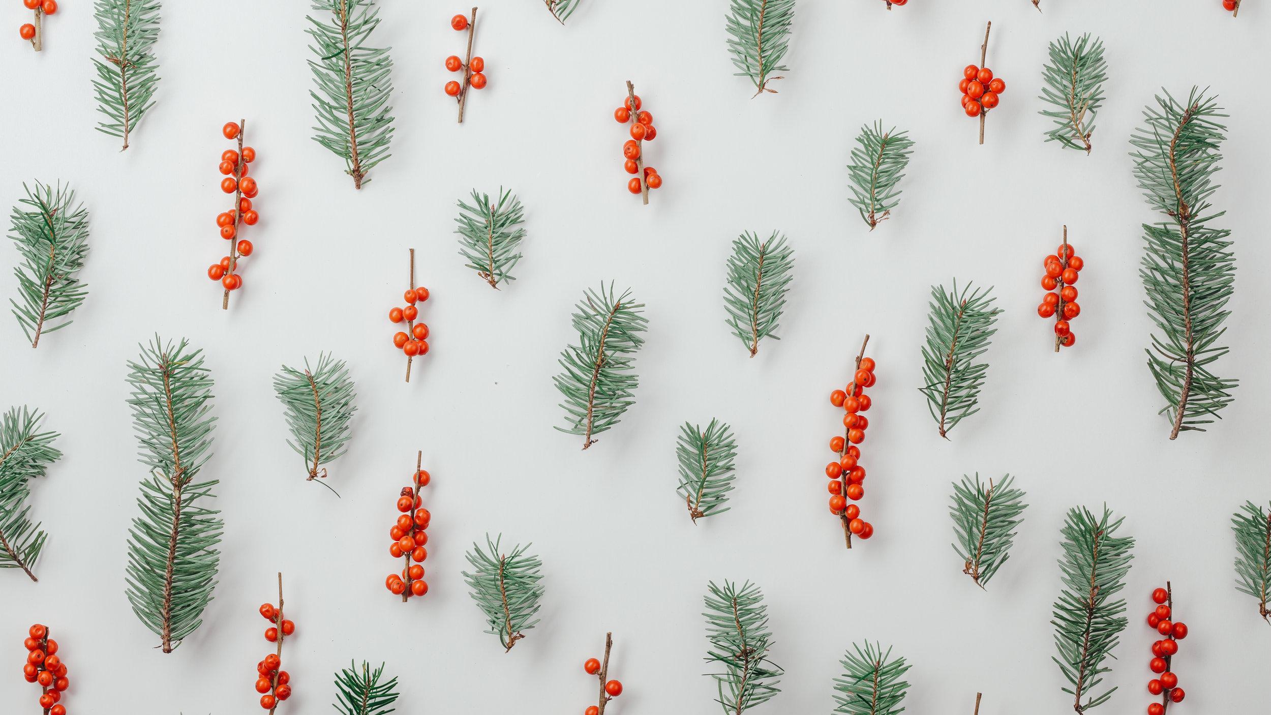 Modern Christmas-48.jpg