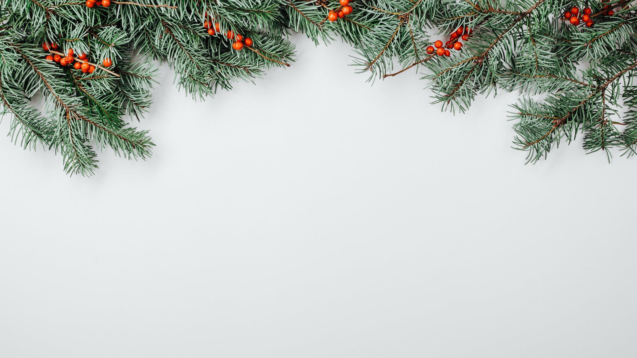 Modern Christmas-49.jpg