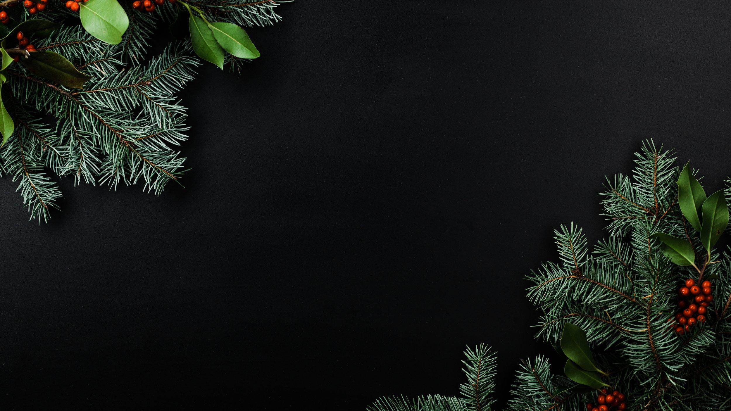 Modern Christmas-72.jpg