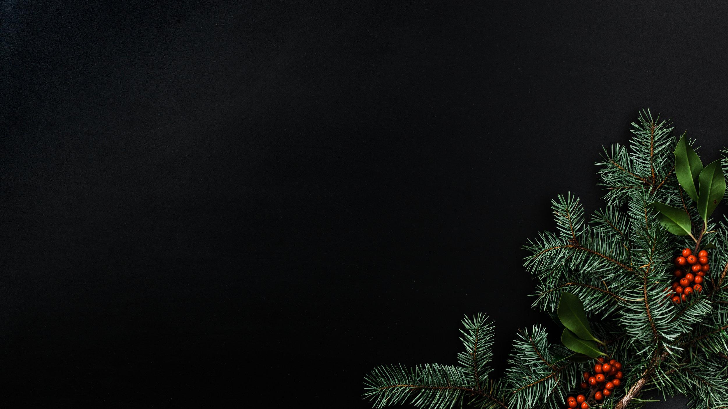 Modern Christmas-73.jpg