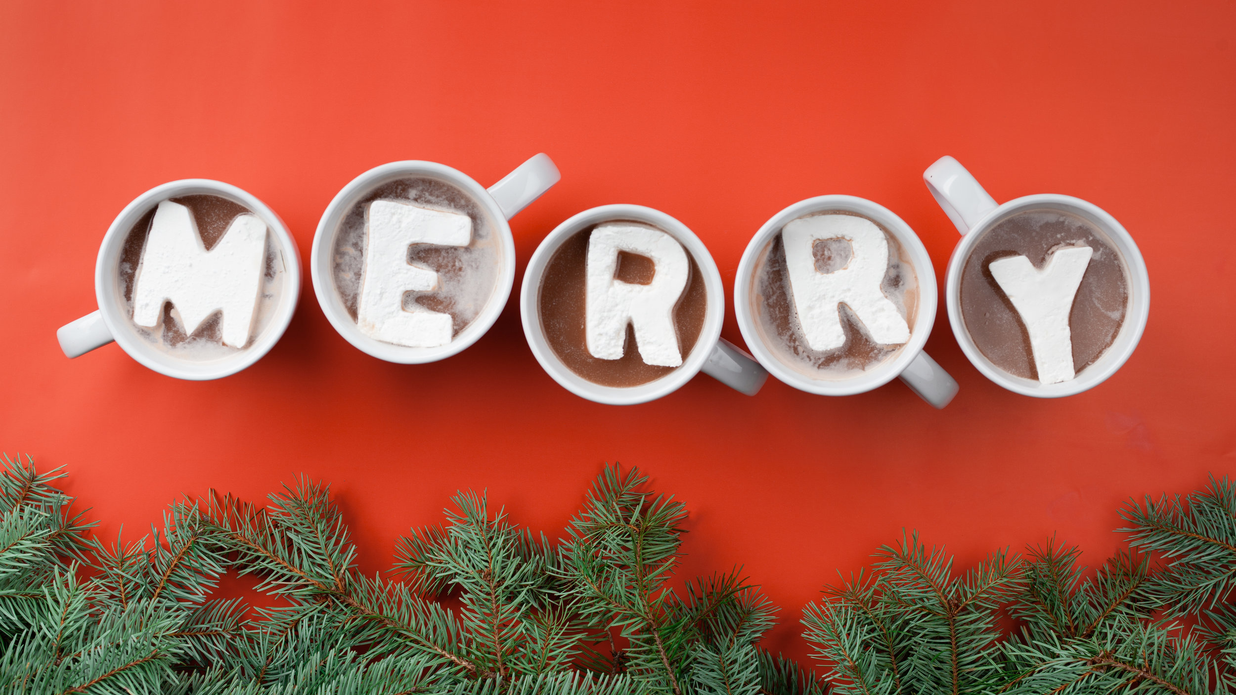 Modern Christmas-85.jpg