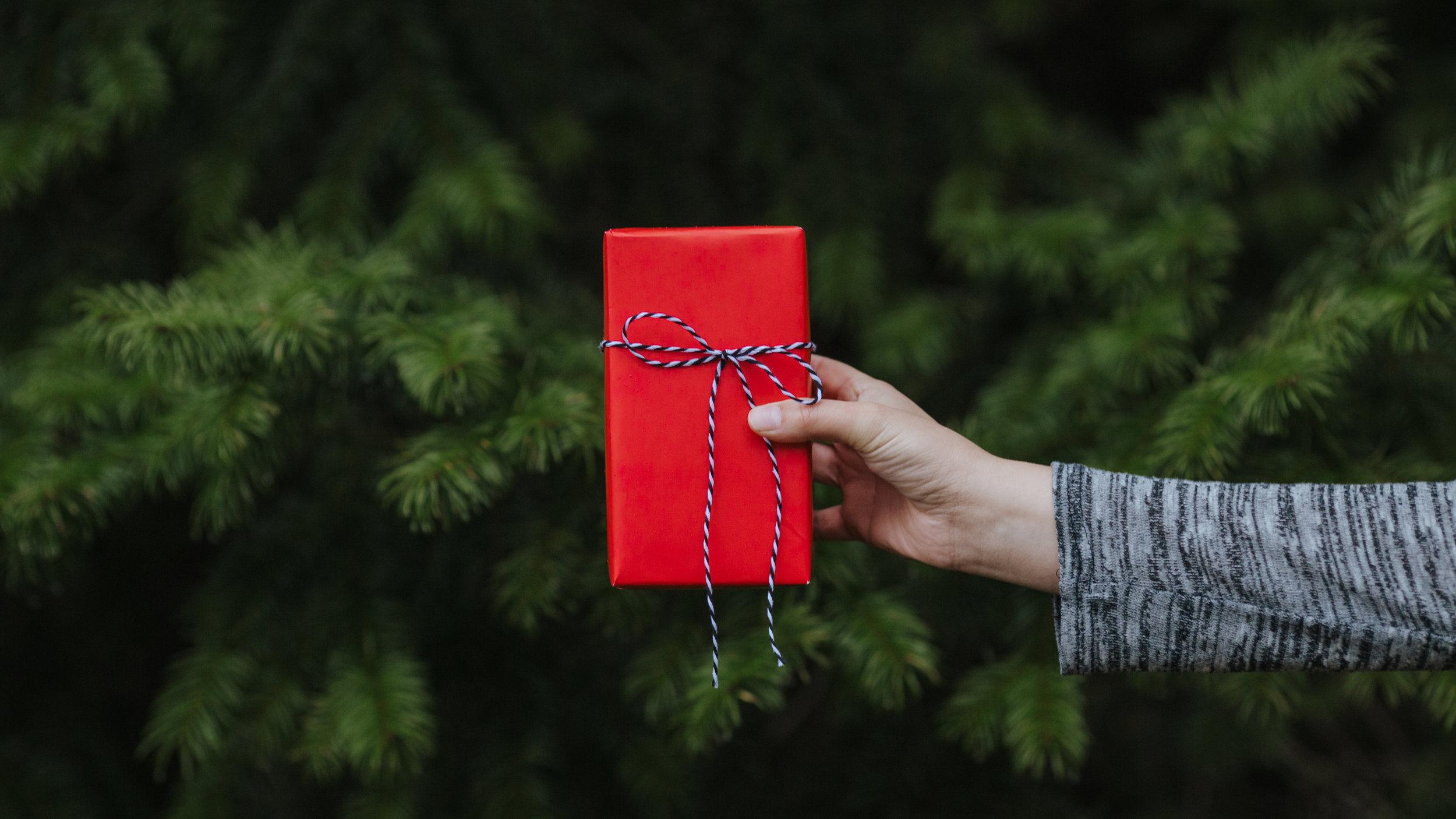 Modern Christmas-104.jpg