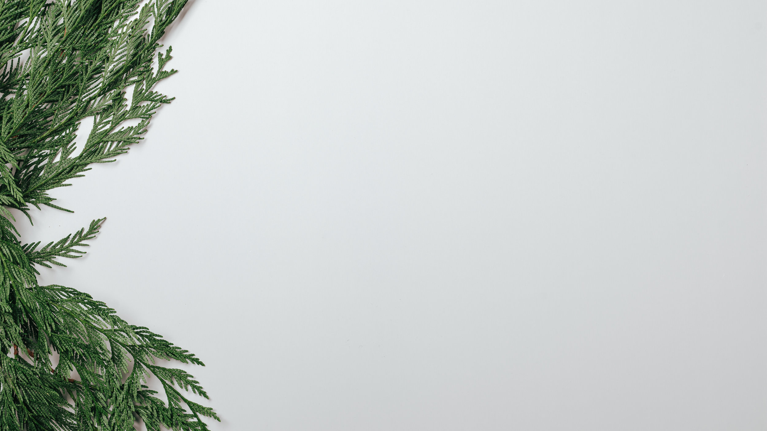 Scandinavian Christmas-1.jpg