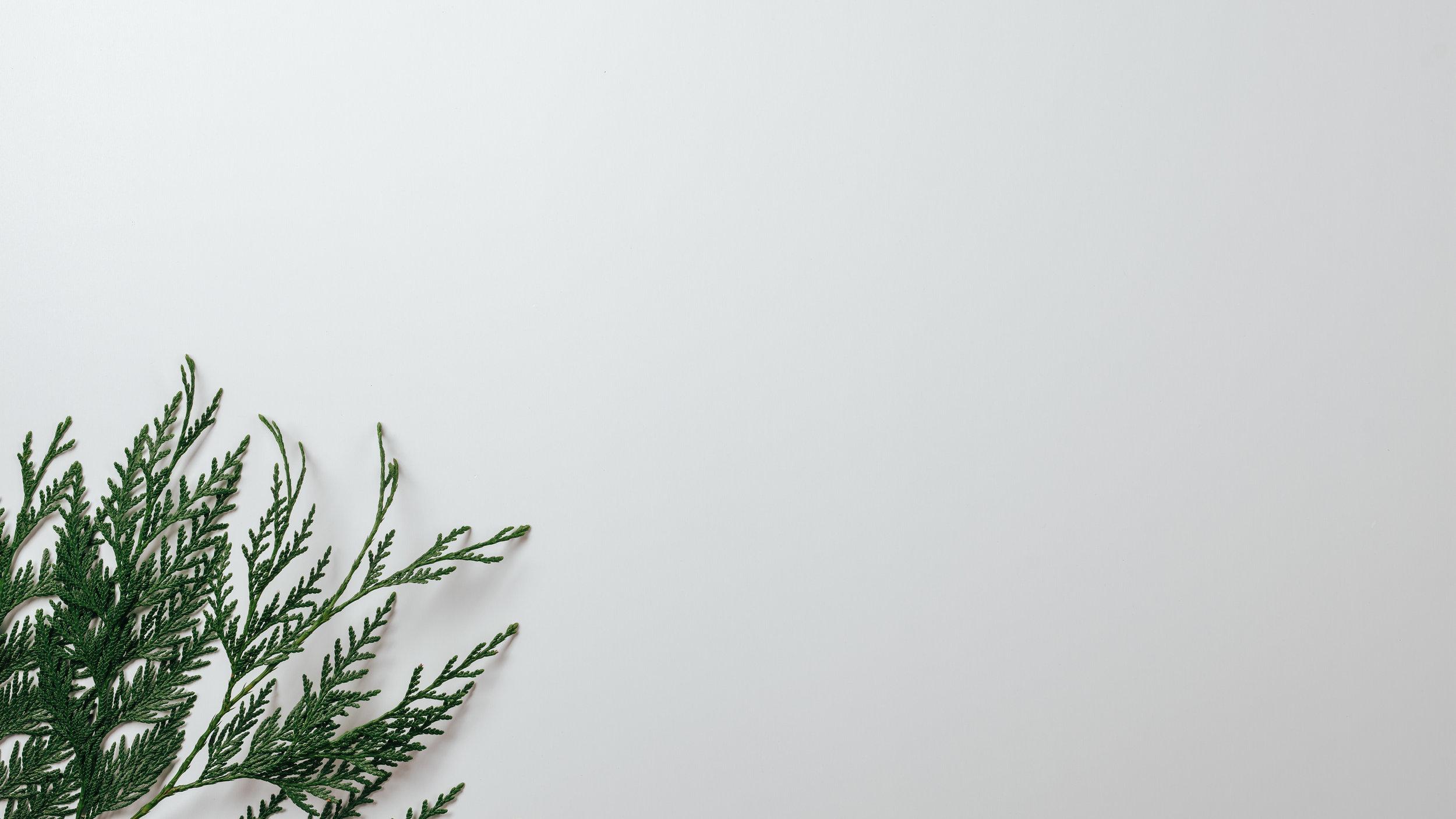 Scandinavian Christmas-4.jpg