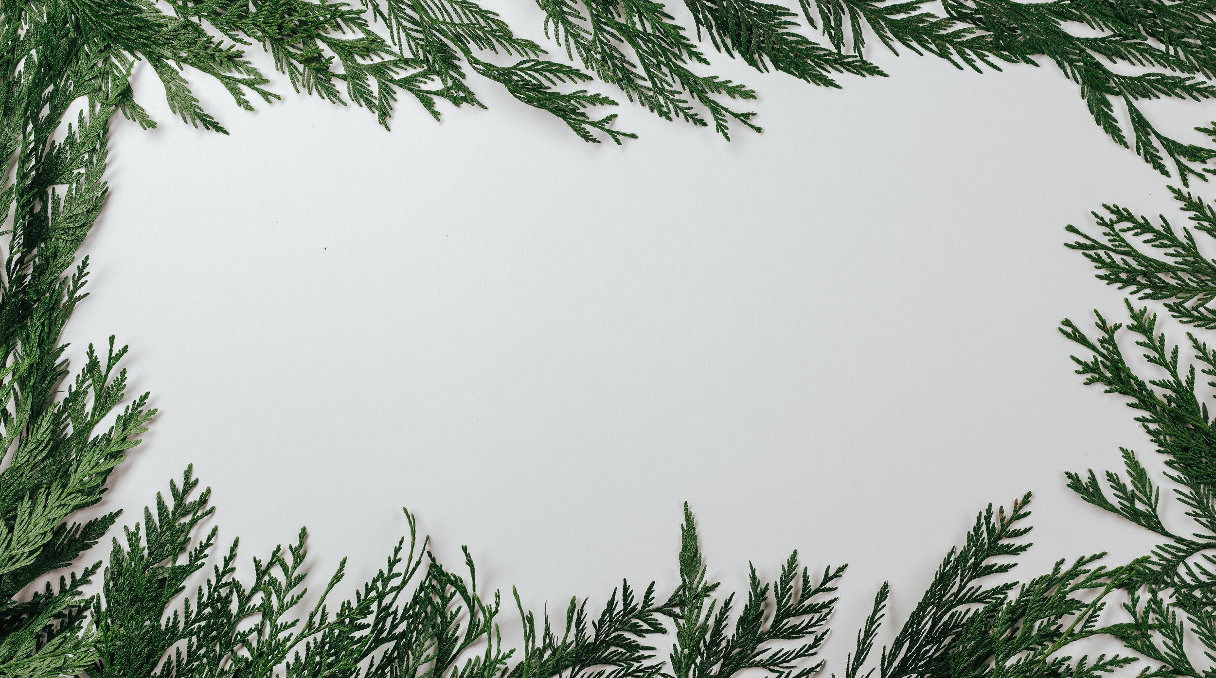 Scandinavian Christmas-6.jpg