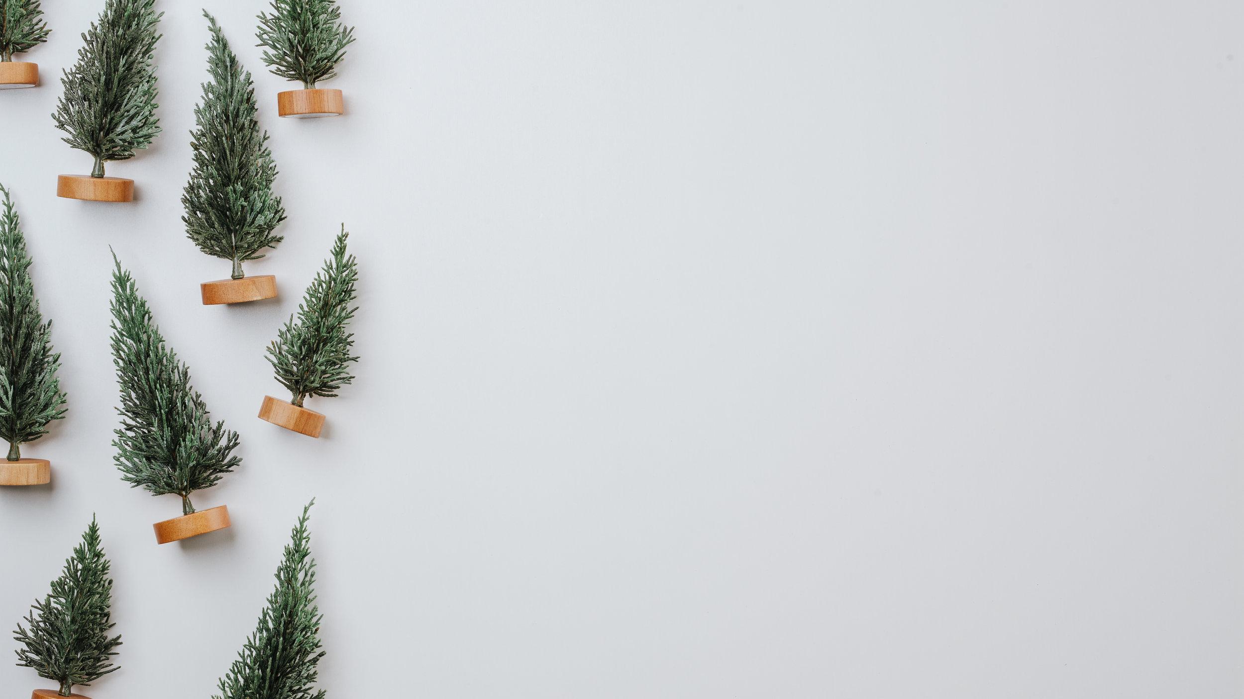 Scandinavian Christmas-79.jpg