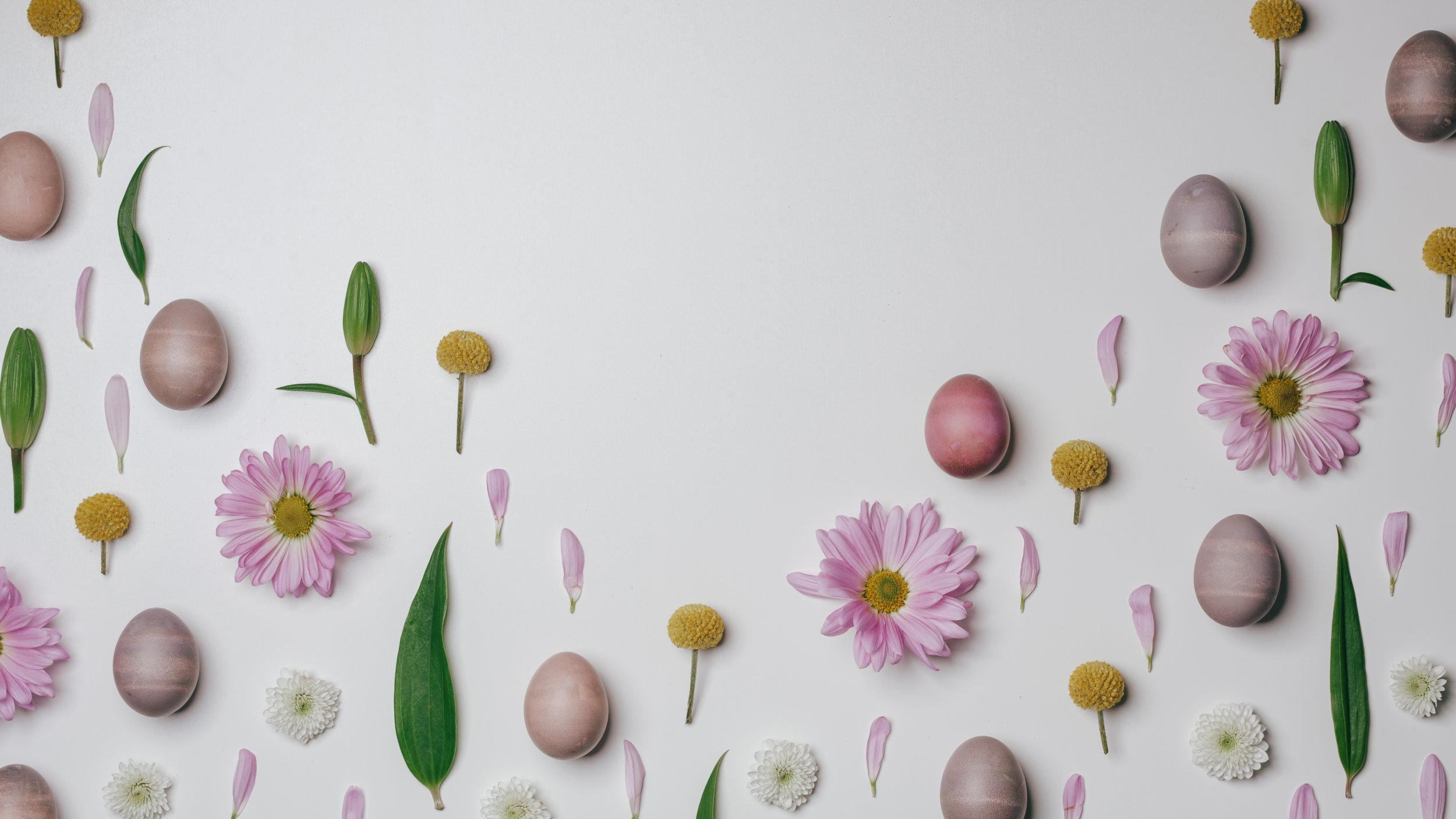 Fun Easter-33.jpg