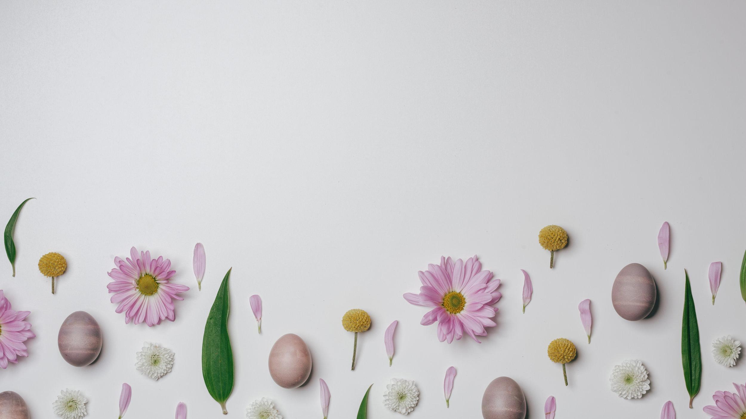 Fun Easter-34.jpg