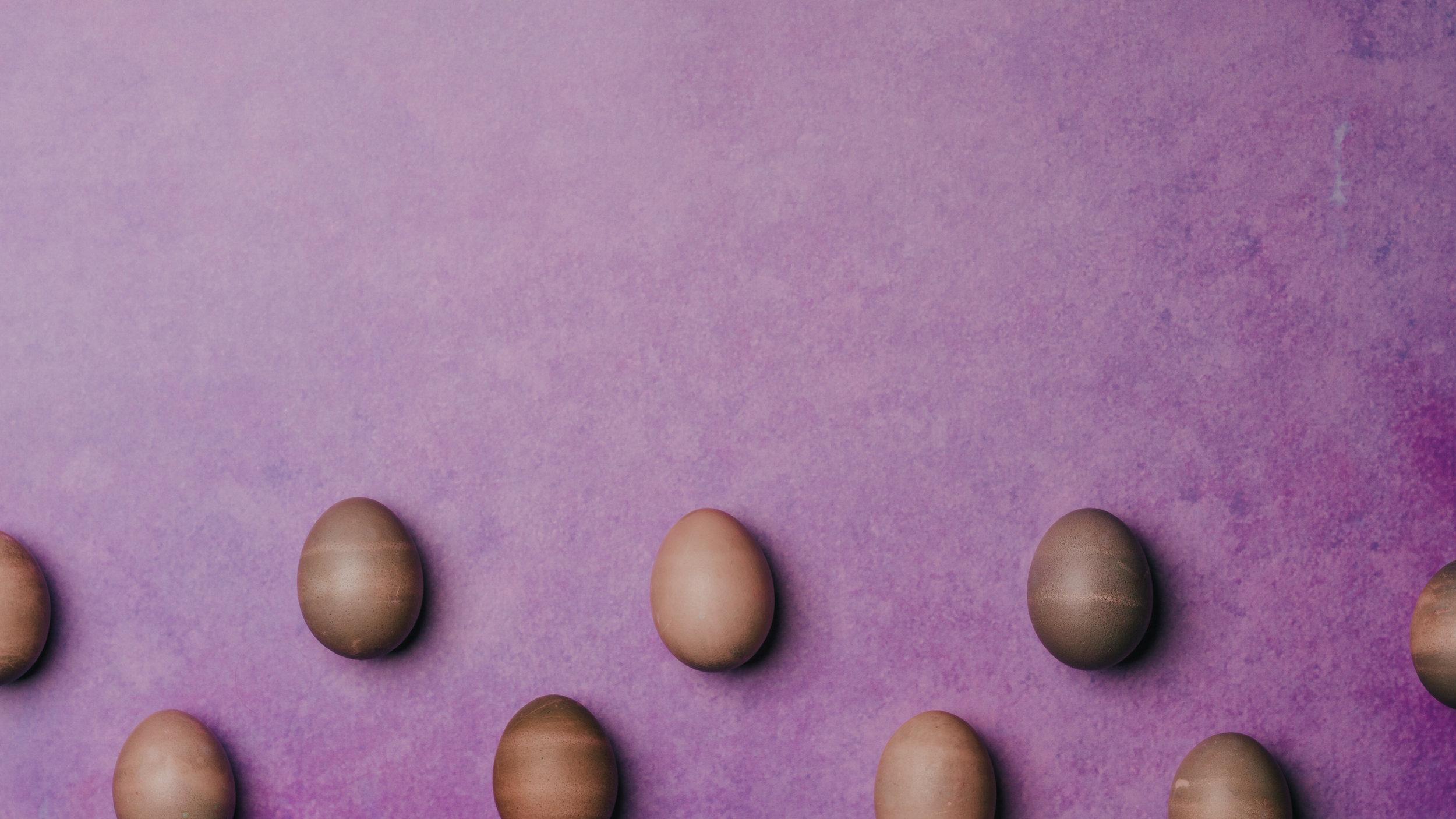 Fun Easter-88.jpg