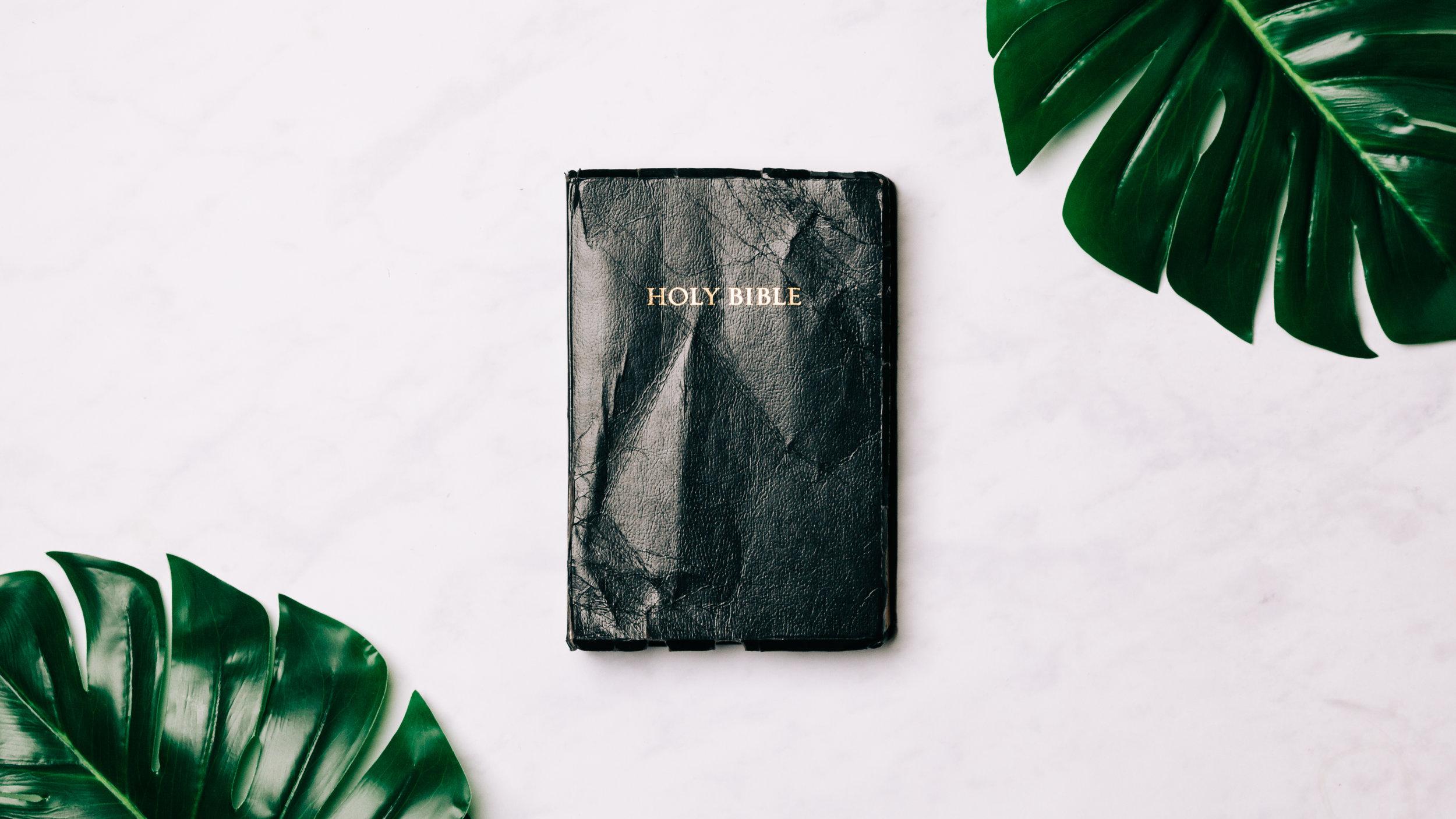 Bible Study-26.jpg