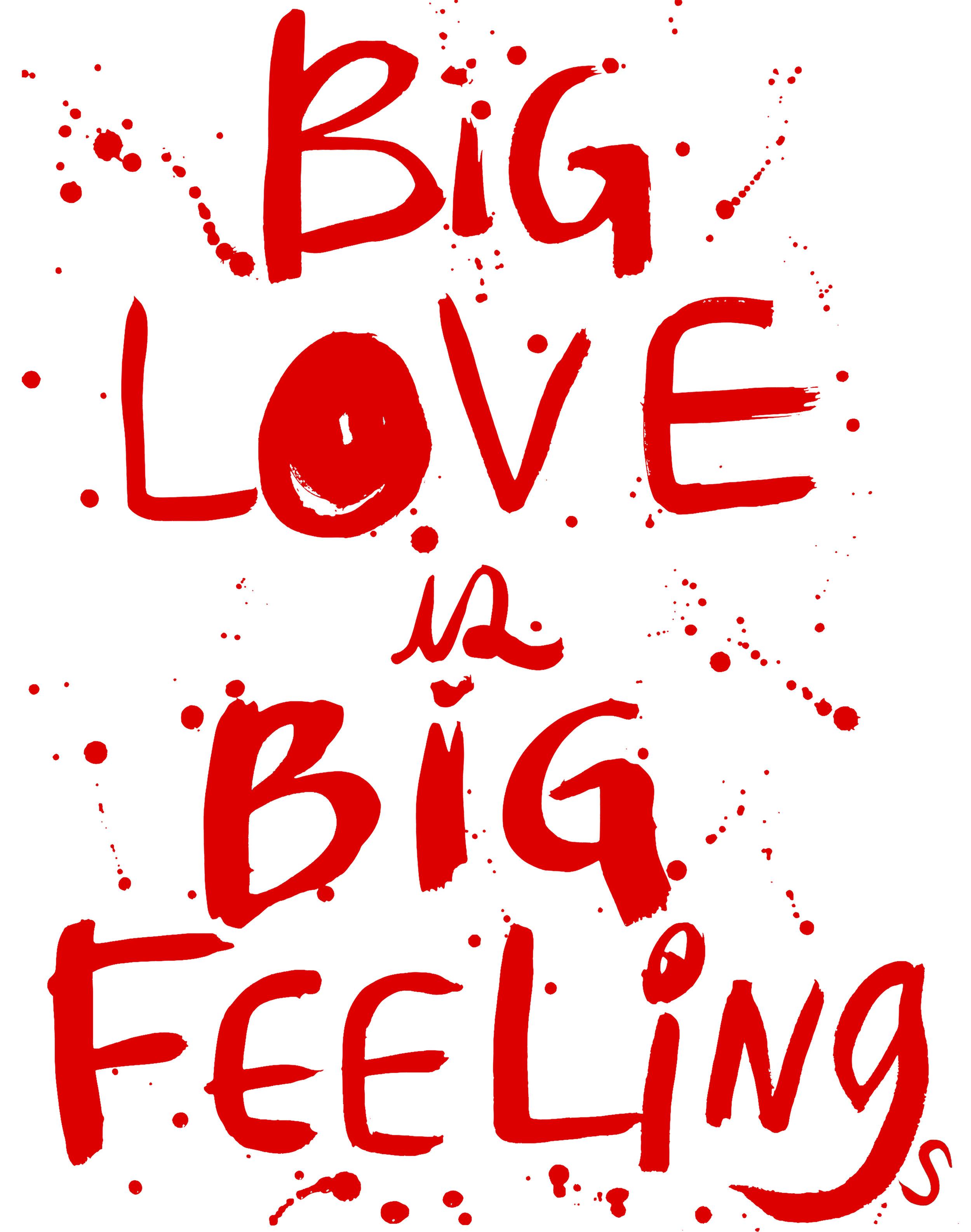 022017_bigloveisbigfeelings_valentines2017_forprinter.jpg