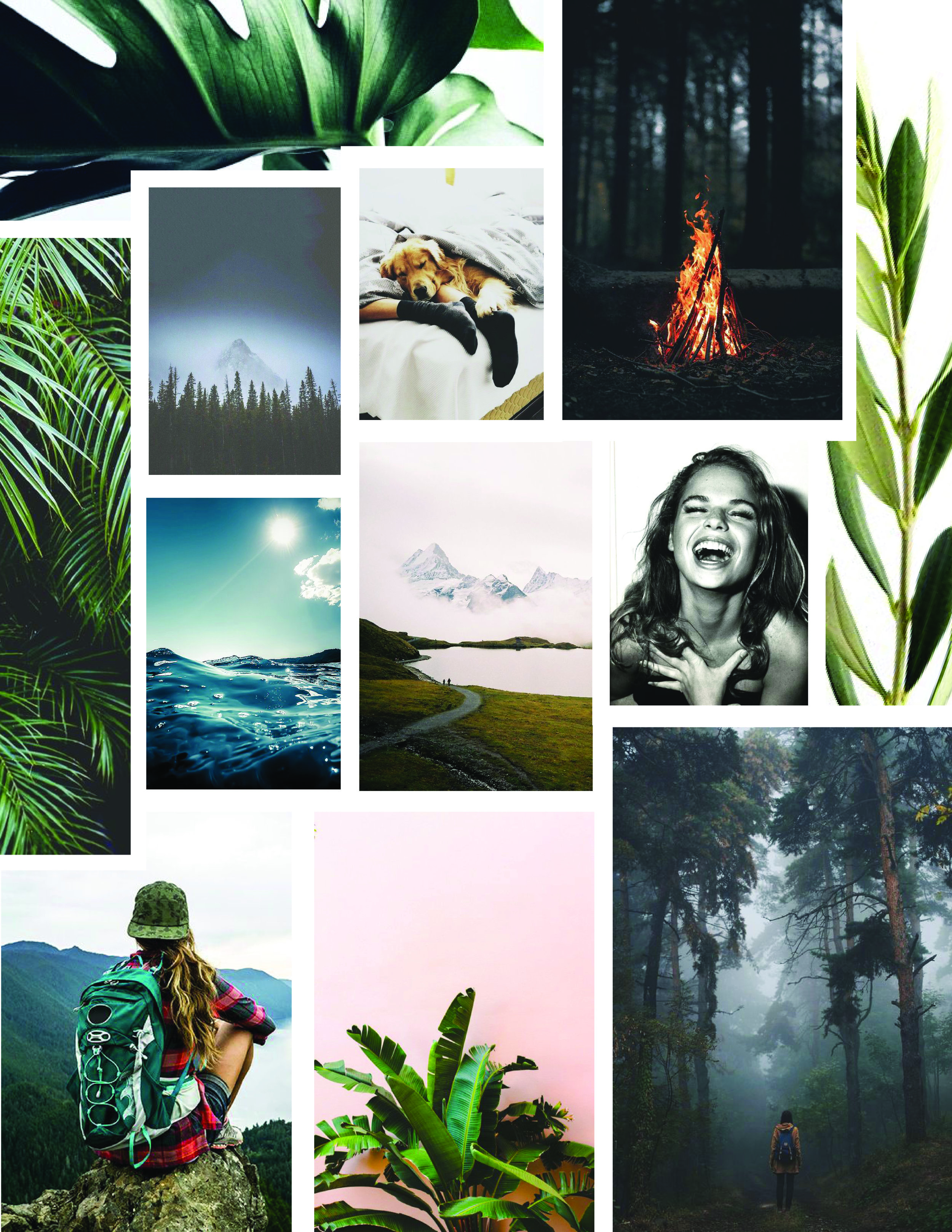 Mood board - Because every good branding is part of a process and mood boards are a precious tool in the journey.