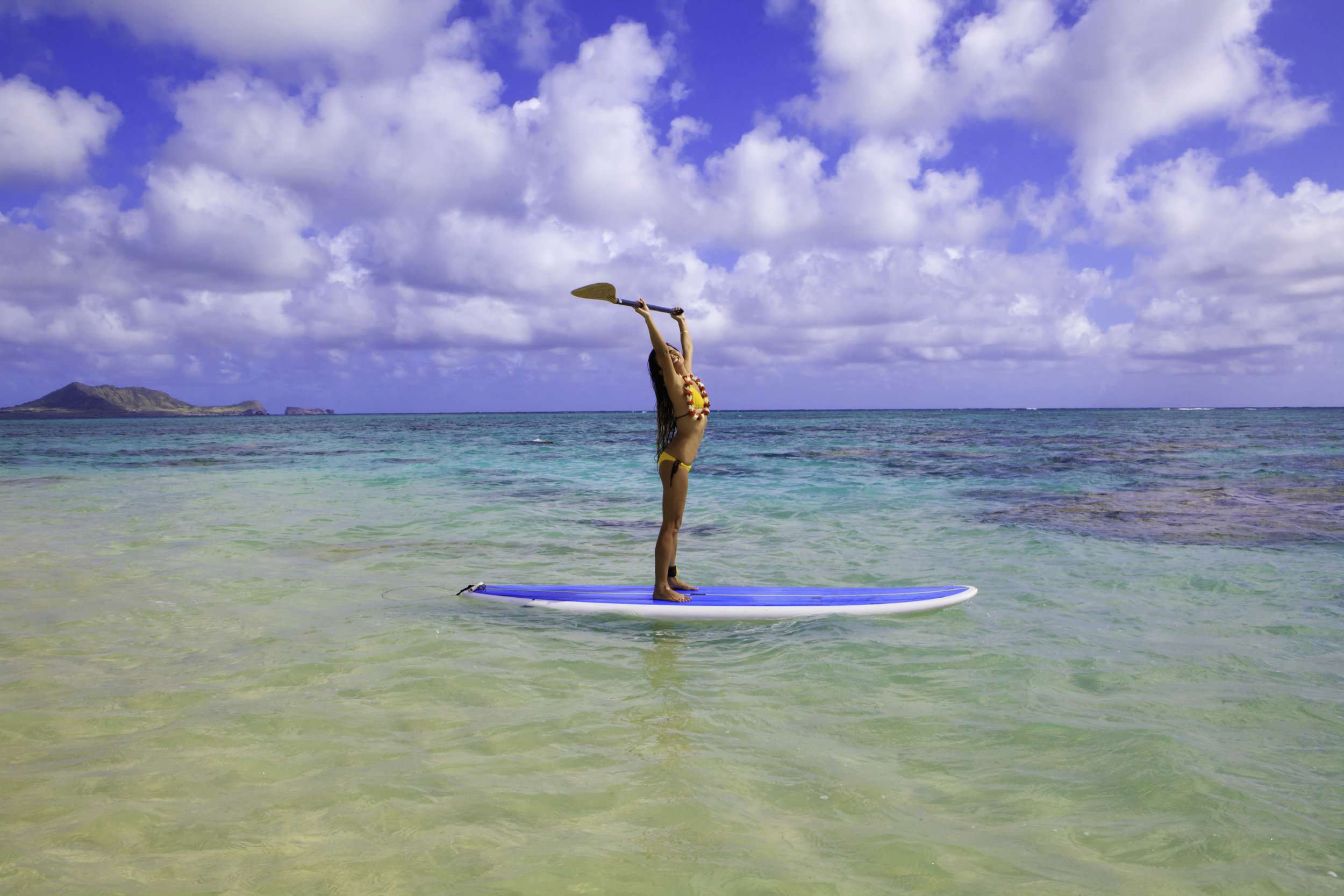 $59 - Stand up paddle board rentals