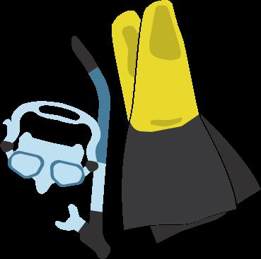 Snorkel gear $15