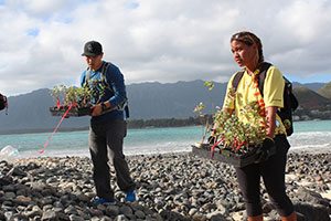 Replanting Native Plants on the Mokulua Islands