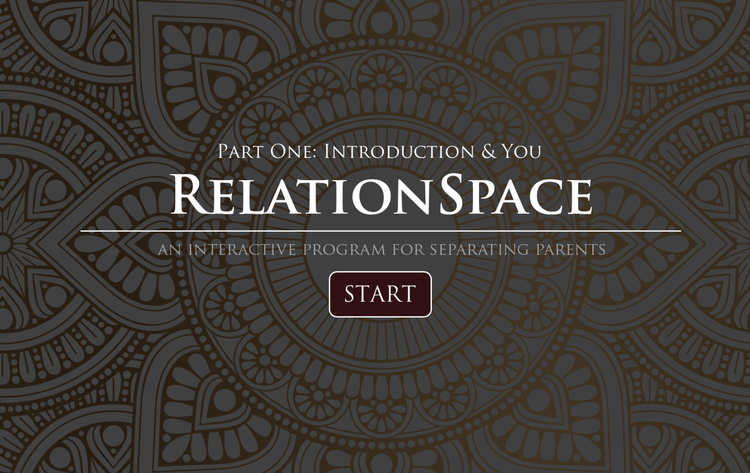 RelationSpace Interactive Program for Separating Parents