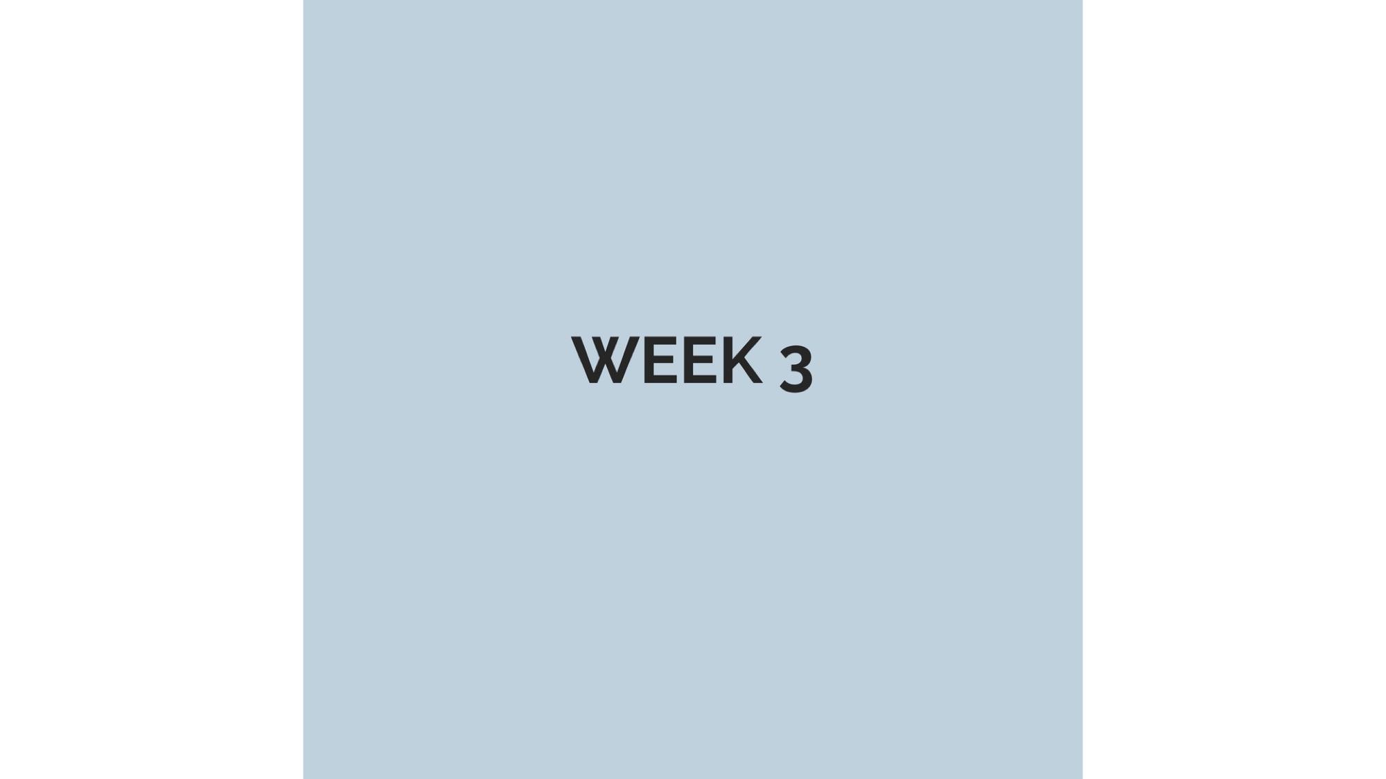 WEEK 3.jpg