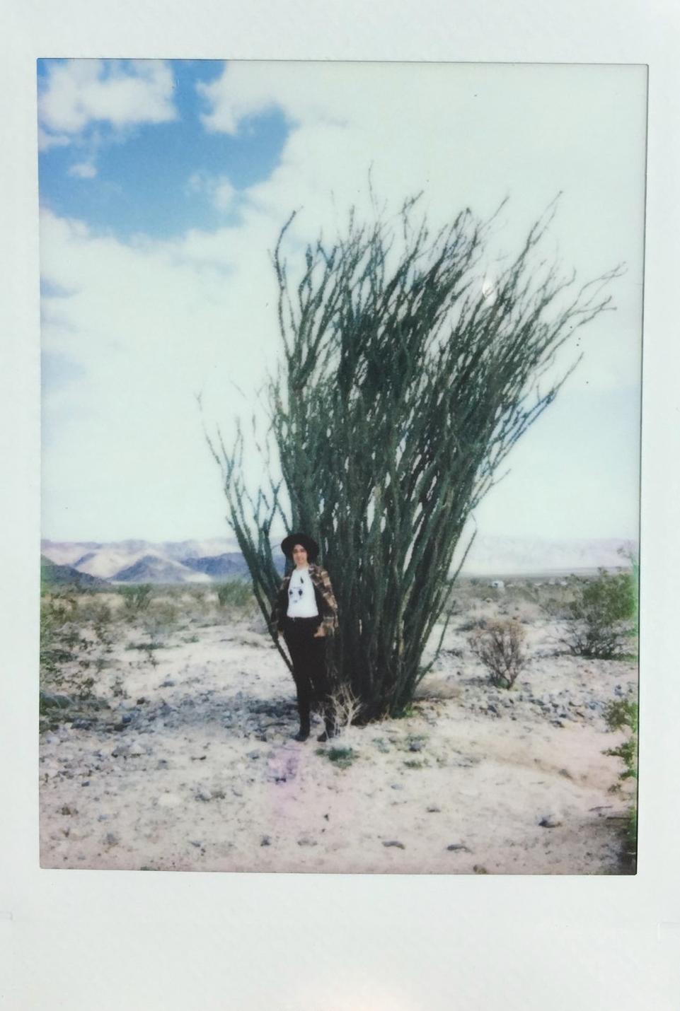 The artist in Joshua Tree, California. -