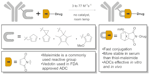 A normal-electron demand Diels–Alder to make antibody–drug conjugates. Why hasn't anyone done this before??