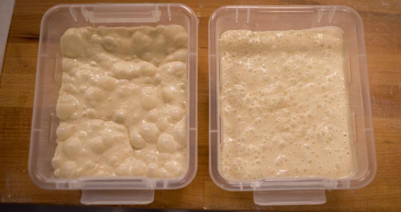 Vi har 2 sorter surdeig: 1 lys, basert på hvetemel, og tørkede frukter. Den grove surdeigen, lages av skallet på helkorn rug.