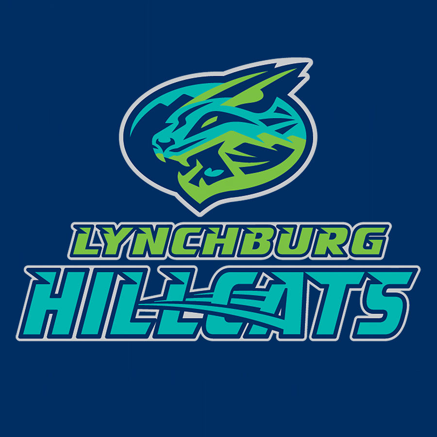 Lynchburg Hillcats - Free ticket for Little with full paid Big ticket purchase