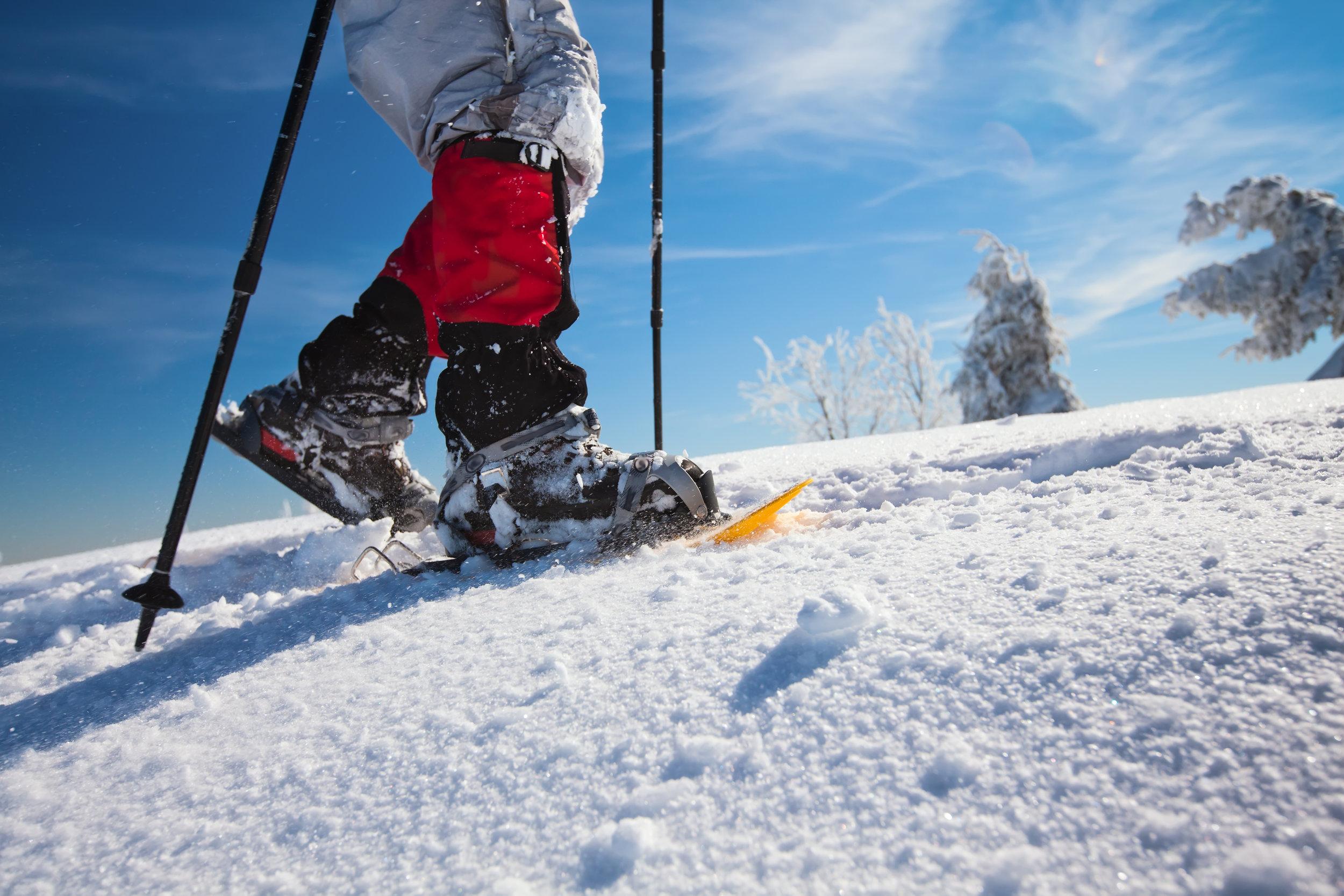 Snowshoeing - Location: Acadia NP, CliftonPrice: $35/personGroup Minimum/Maximum: 4/15