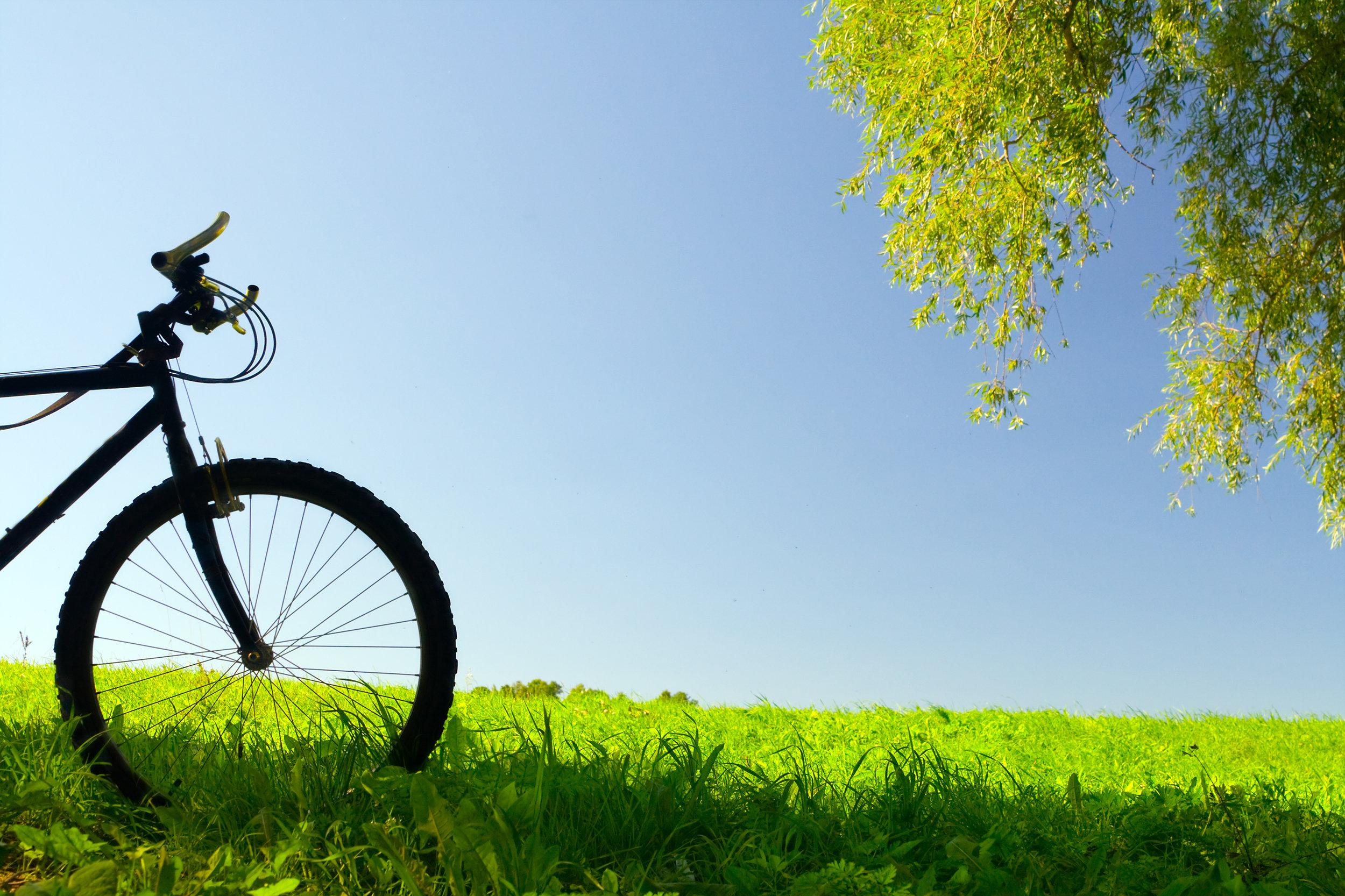 Biking - Location: Acadia NPPrice: $40/personGroup Minimum/Maximum: 4/12