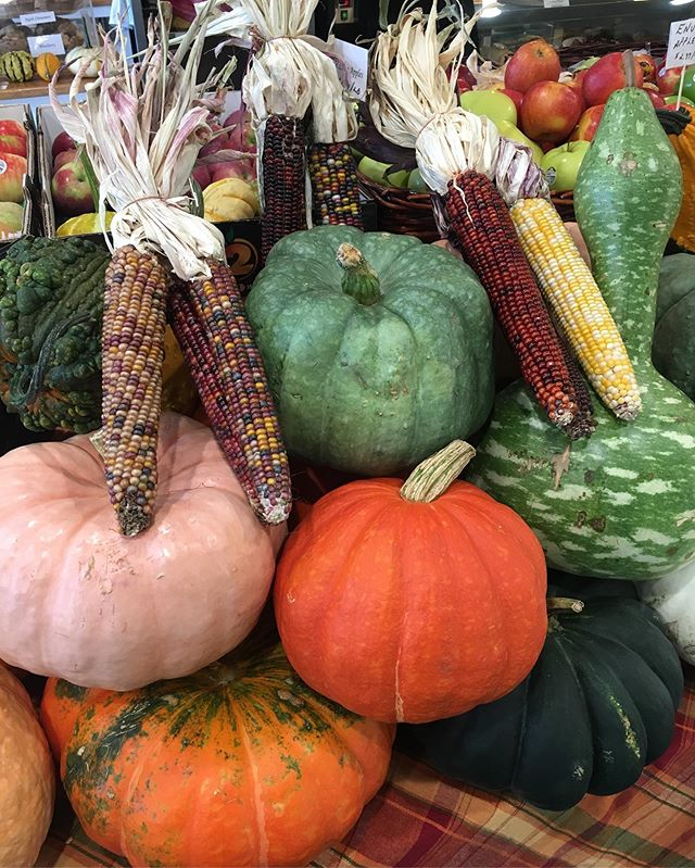 The weather may still feel like summer, but it's all about fall at Maria's! We have a gorgeous selection of pumpkins and corn for autumn festivities and decorations 🌽🍁🎃