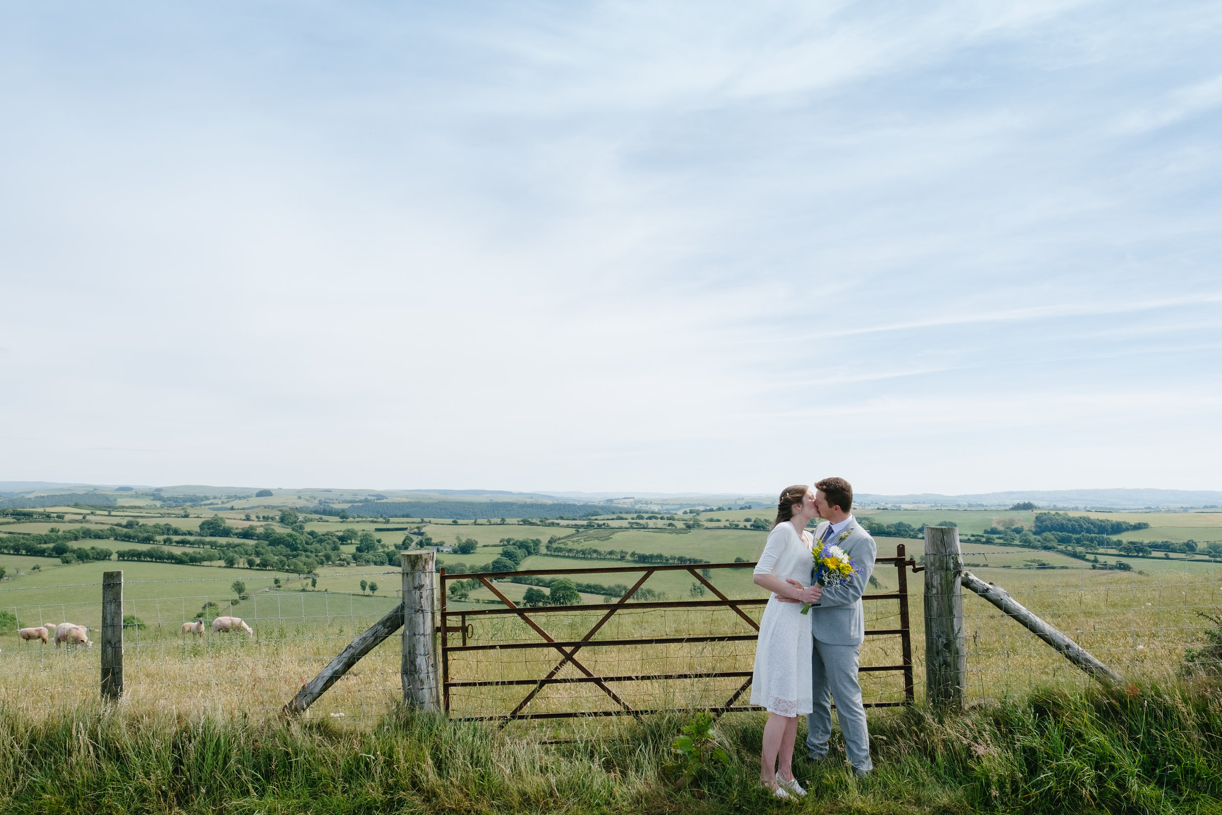 wedding-aberystwyth.jpg