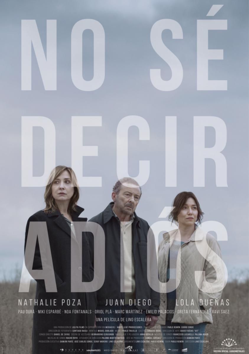 no_se_decir_adios-933468405-large.jpg