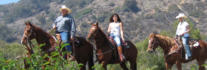 lg-horseback.jpeg
