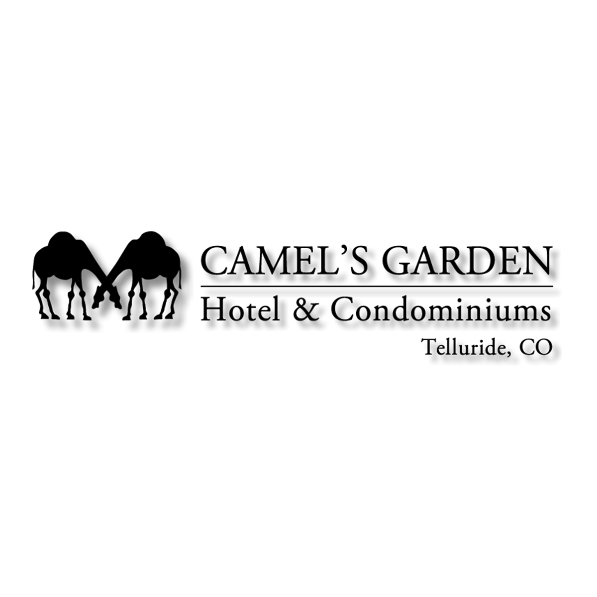 web-ready-camels.png