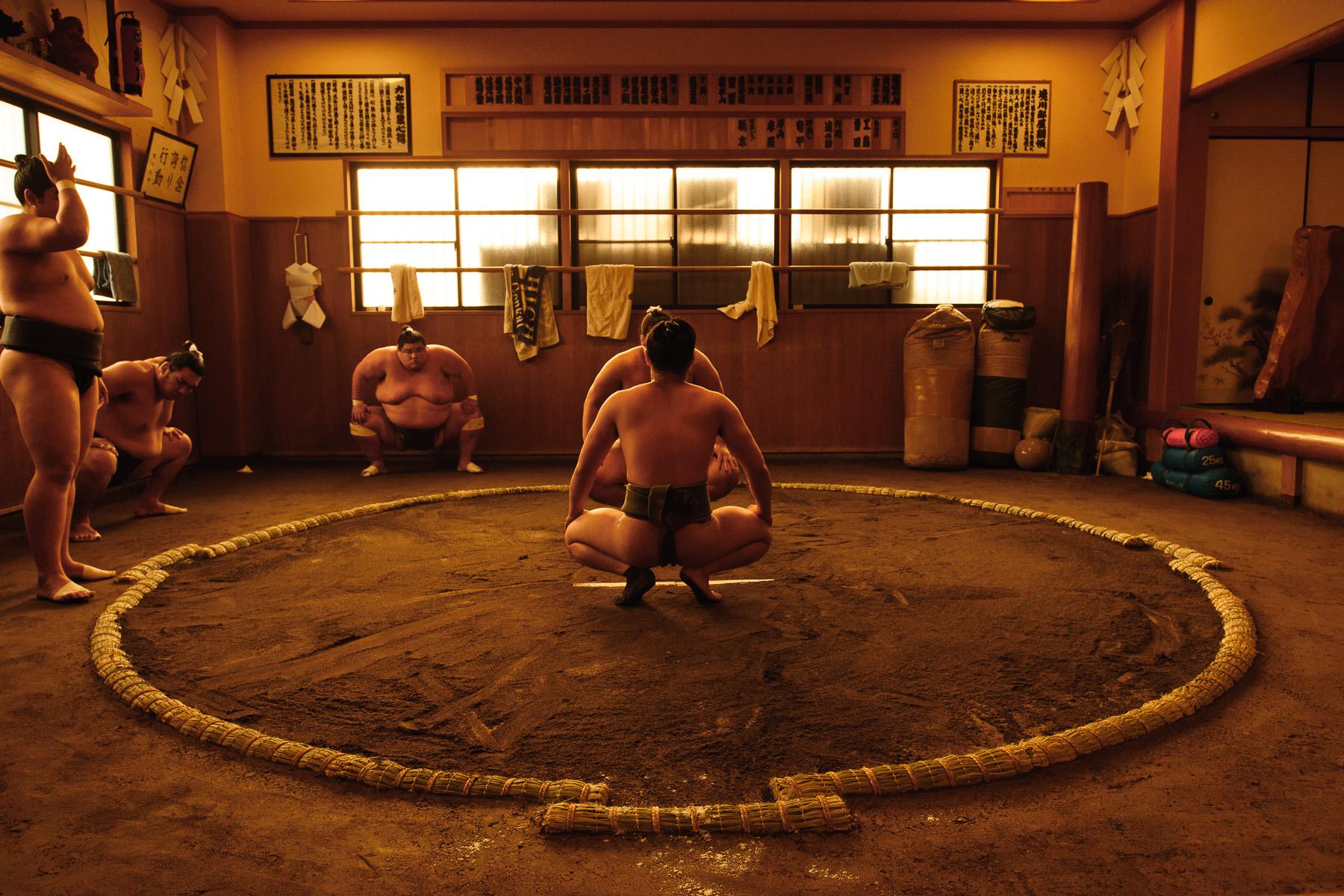 1-sumo-DSX_4782.jpg