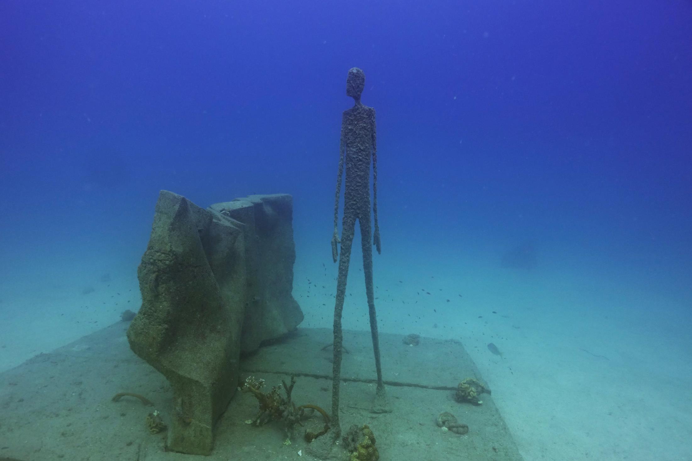 Koh tao underwater museum