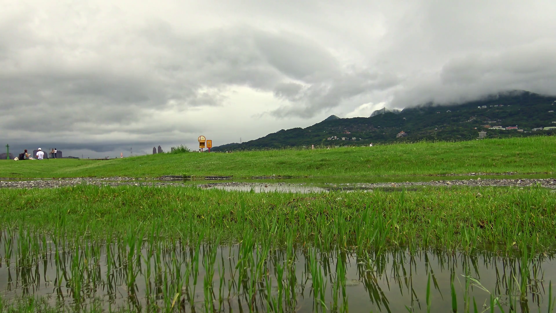 videoblocks-4k-landscape-of-riverside-park-at-tamsui-river-with-grass-and-puddle-water-in-a-calm-cloudy-weather-taipei-dan_sn0fkfnog_thumbnail-full01.png