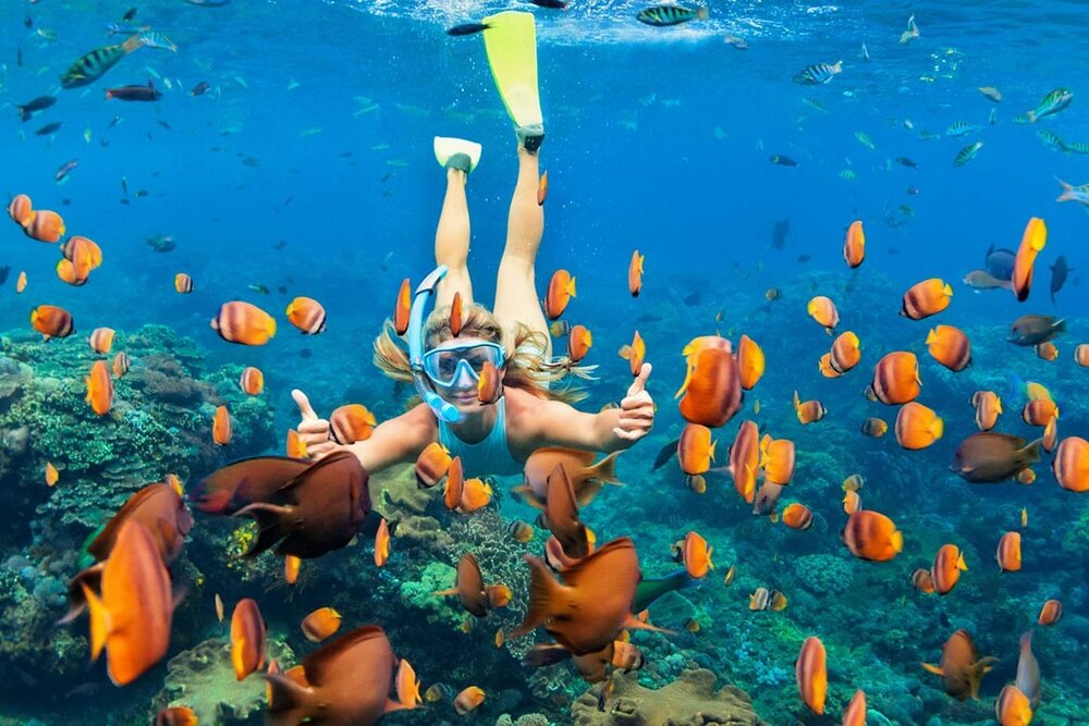 gamat-bay-two-snorkeling-nusa-penida.jpg