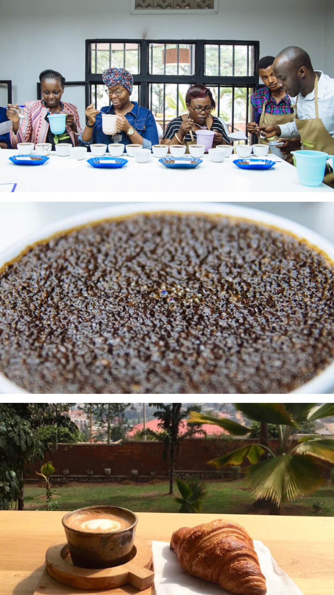 17.Take a specialty coffee masterclass