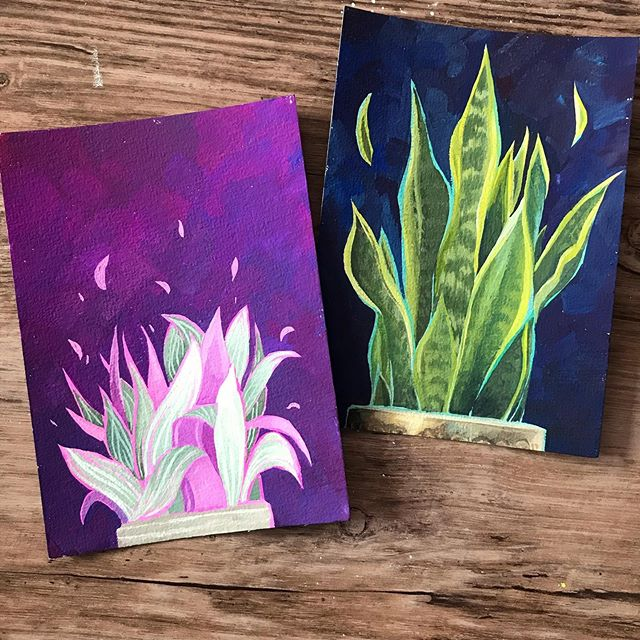 Having favourite plants isn't as bad as choosing a favourite child is it? Sometimes it feels like it is 😂😂 but these two (Antonio especially- the one with the purple background) are my absolute angels. Im just saying, if the house was burning down, I'm rescuing these 2 lads. ⠀ .⠀ The response to my plant postcards has been amazing- thanks so much you guys! I'm so glad you love my little green babies as much as I do. There are still plenty of prints in the shop and lots of stickers too. You can find the link in my bio. 💚🌿💚🌿⠀ .⠀ .⠀ .⠀ .⠀ .⠀ #Art #painting #illustration #artistsoninstagram #plants #houseplants #nature #gouache #gouachepainting #plantillustration