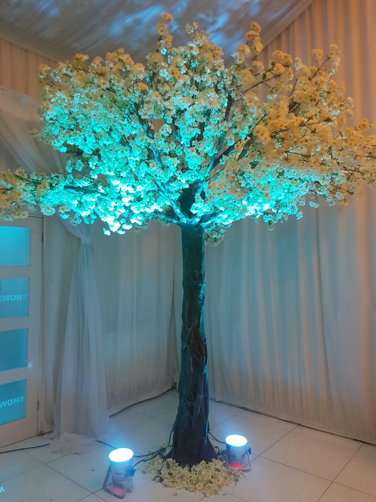 blossom.tree.JPG