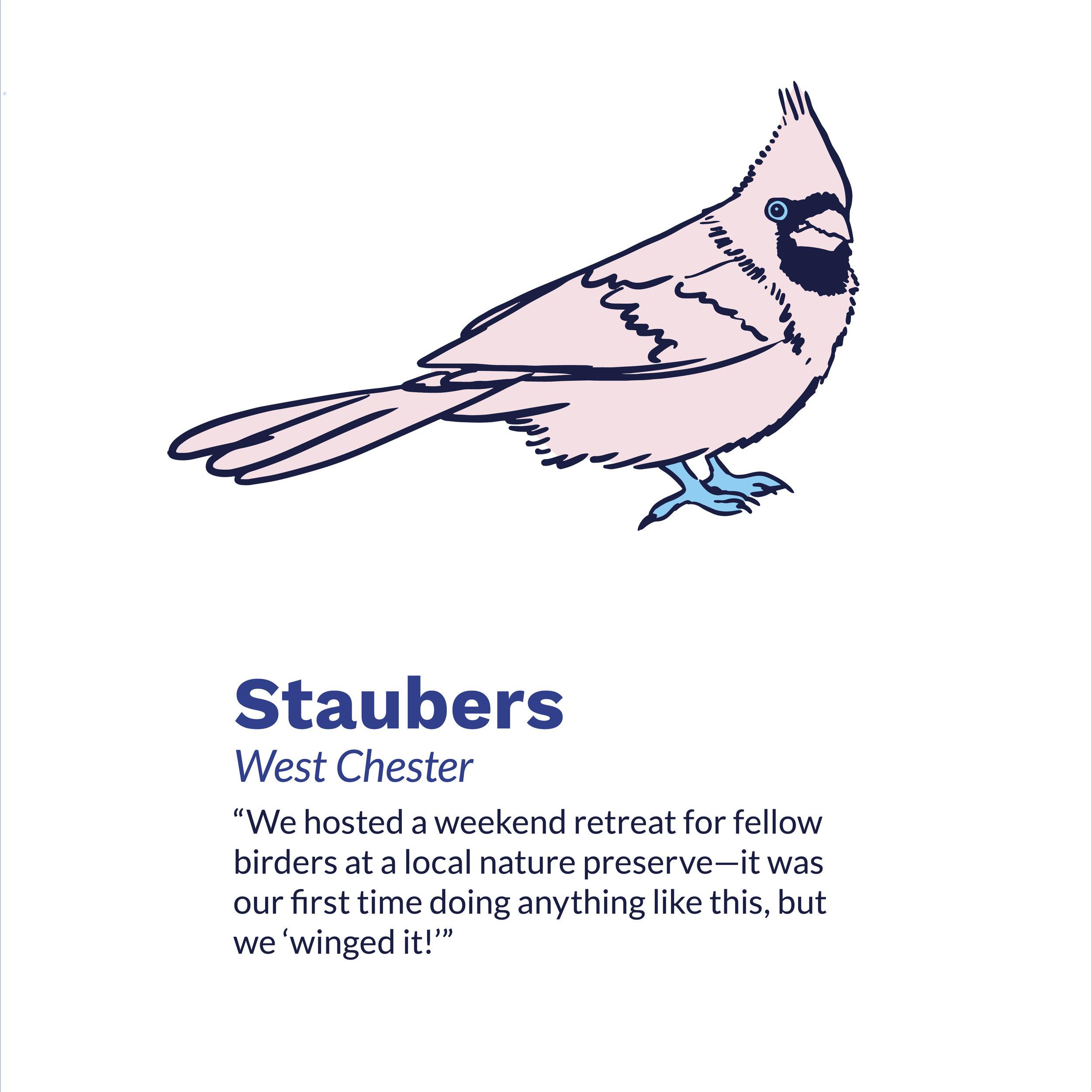 Staubers_INSTAGRAM 1800 X 1800 C.jpg