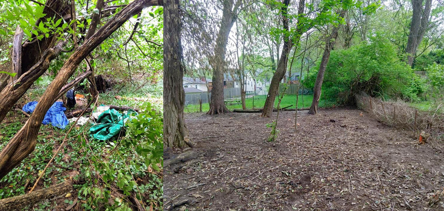 Before and after photos of the changes in Johnson Woods.